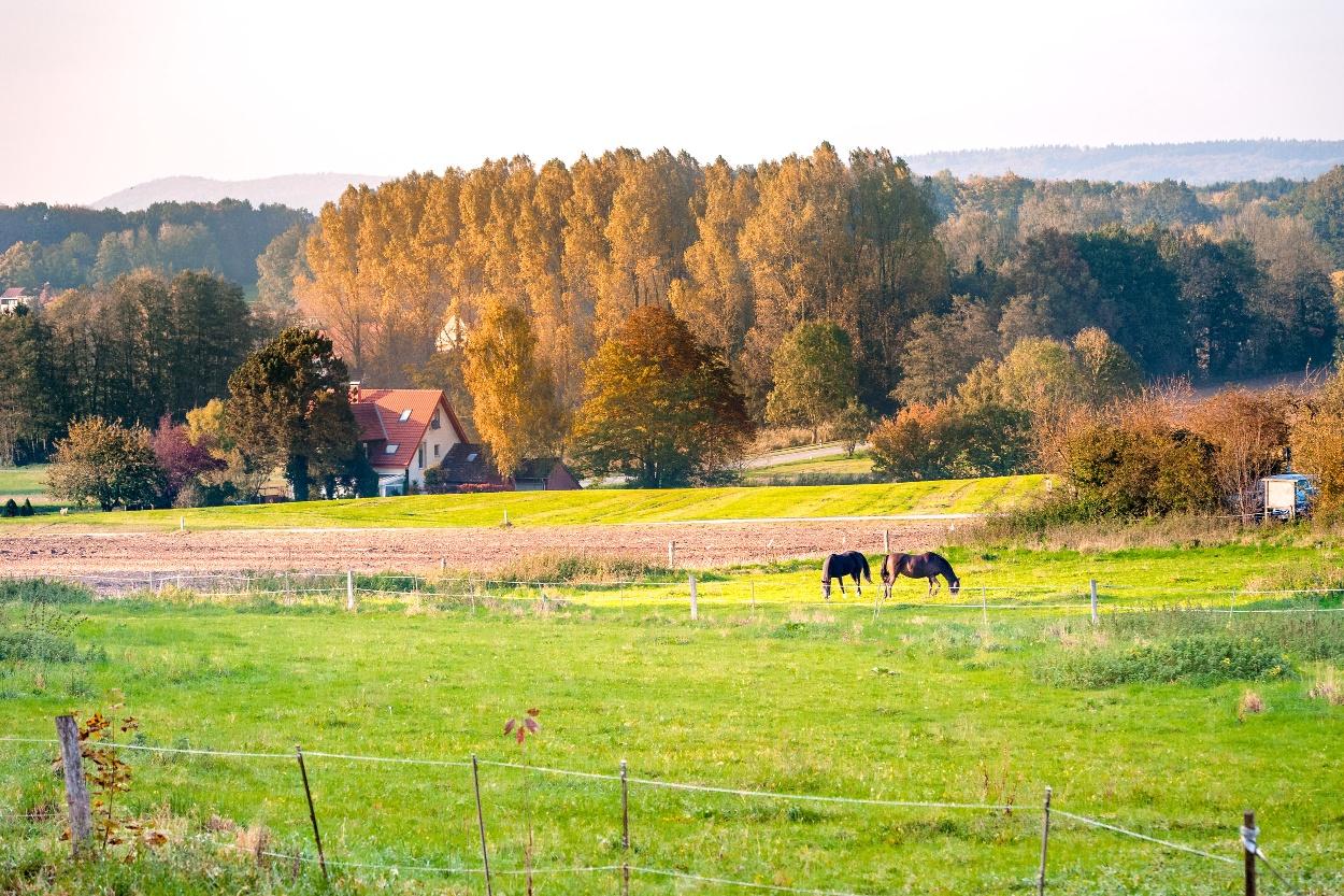 Malerische Landschaft bei Borgholzhausen