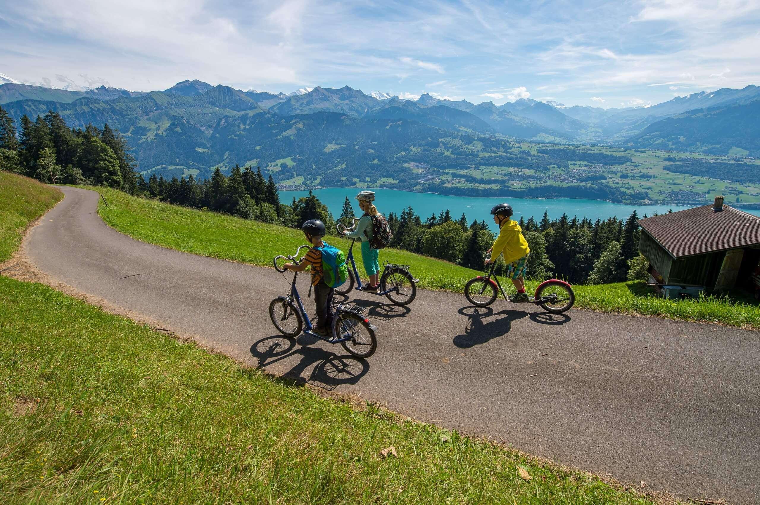 niederhorn-trotti-bike-sommer-abfahrt-gruppe-thunersee-panorama