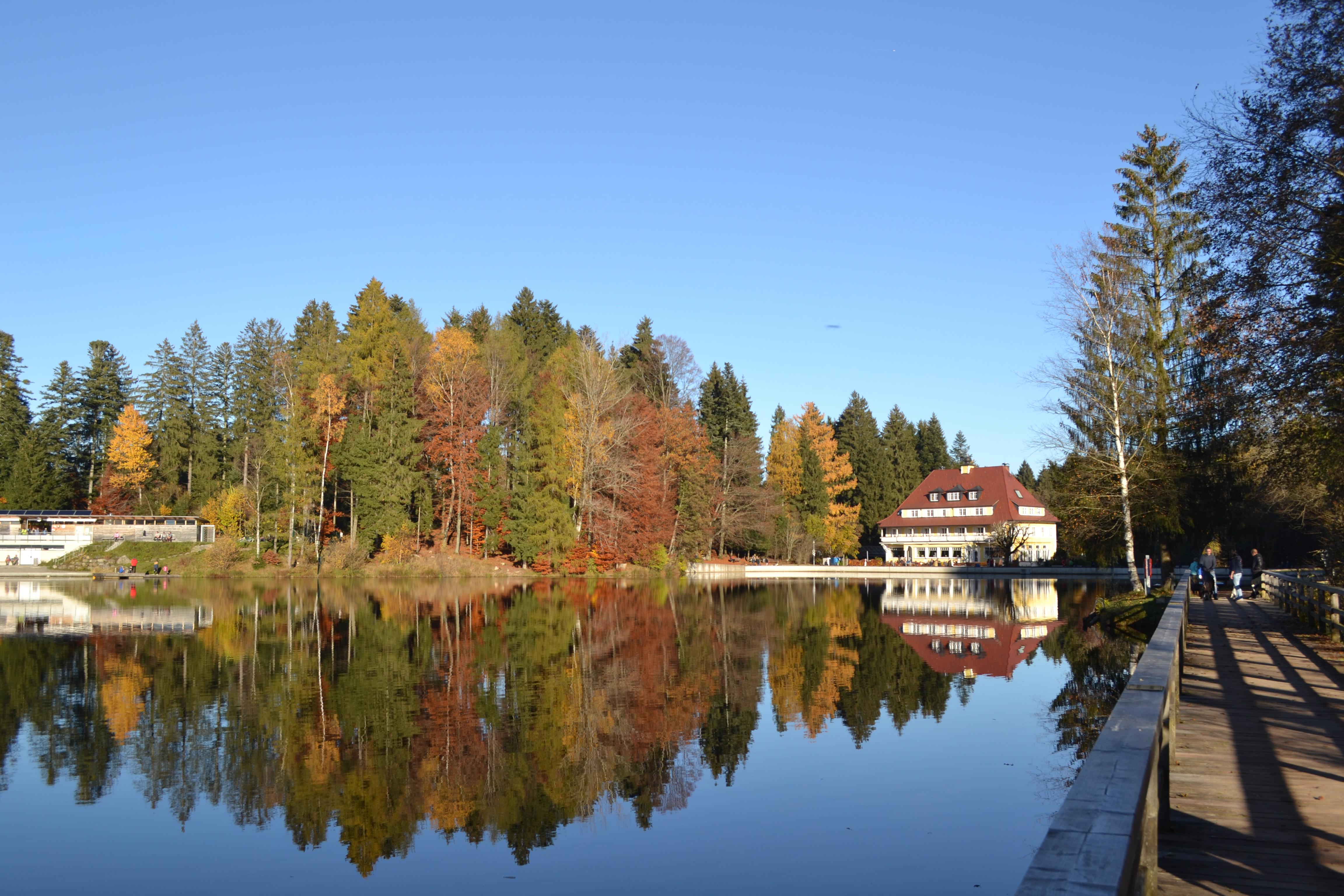 Waldseehotel im Herbst