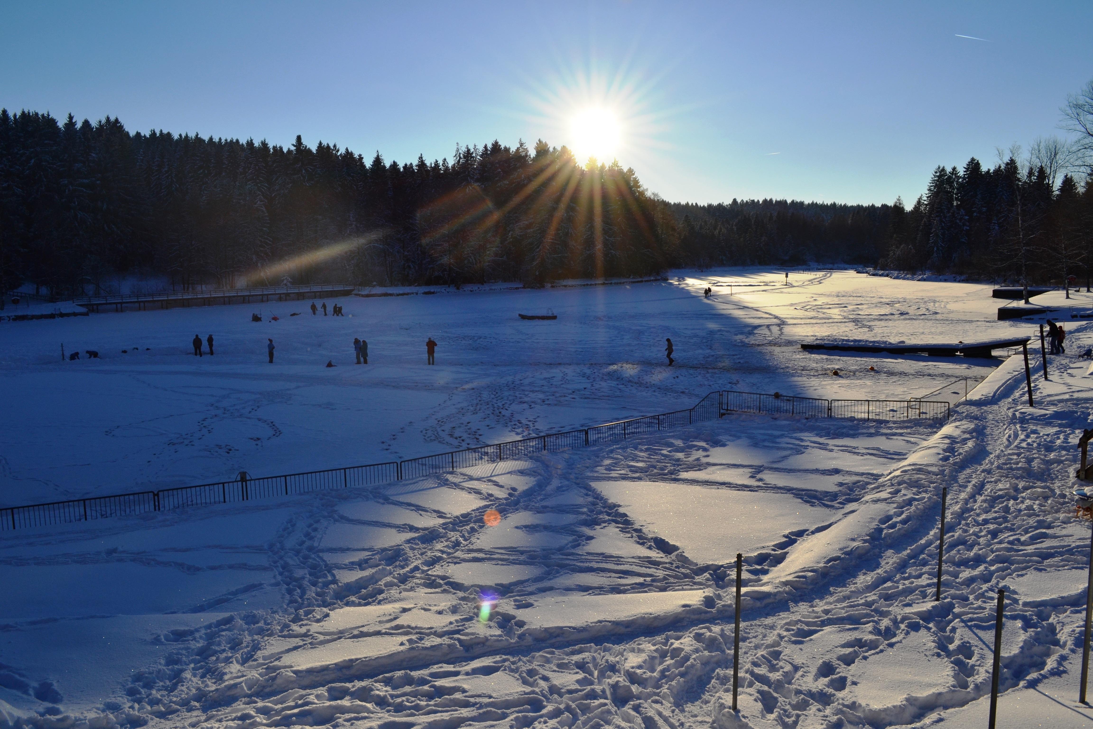 Waldsee mit Eisläufern
