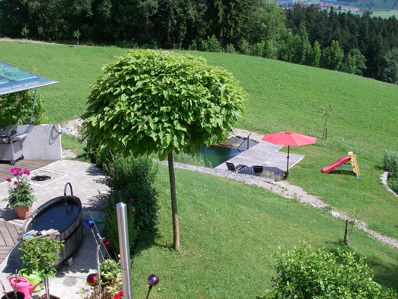Ferienhof Böller, Blick aus dem Wohnzimmer und Küche