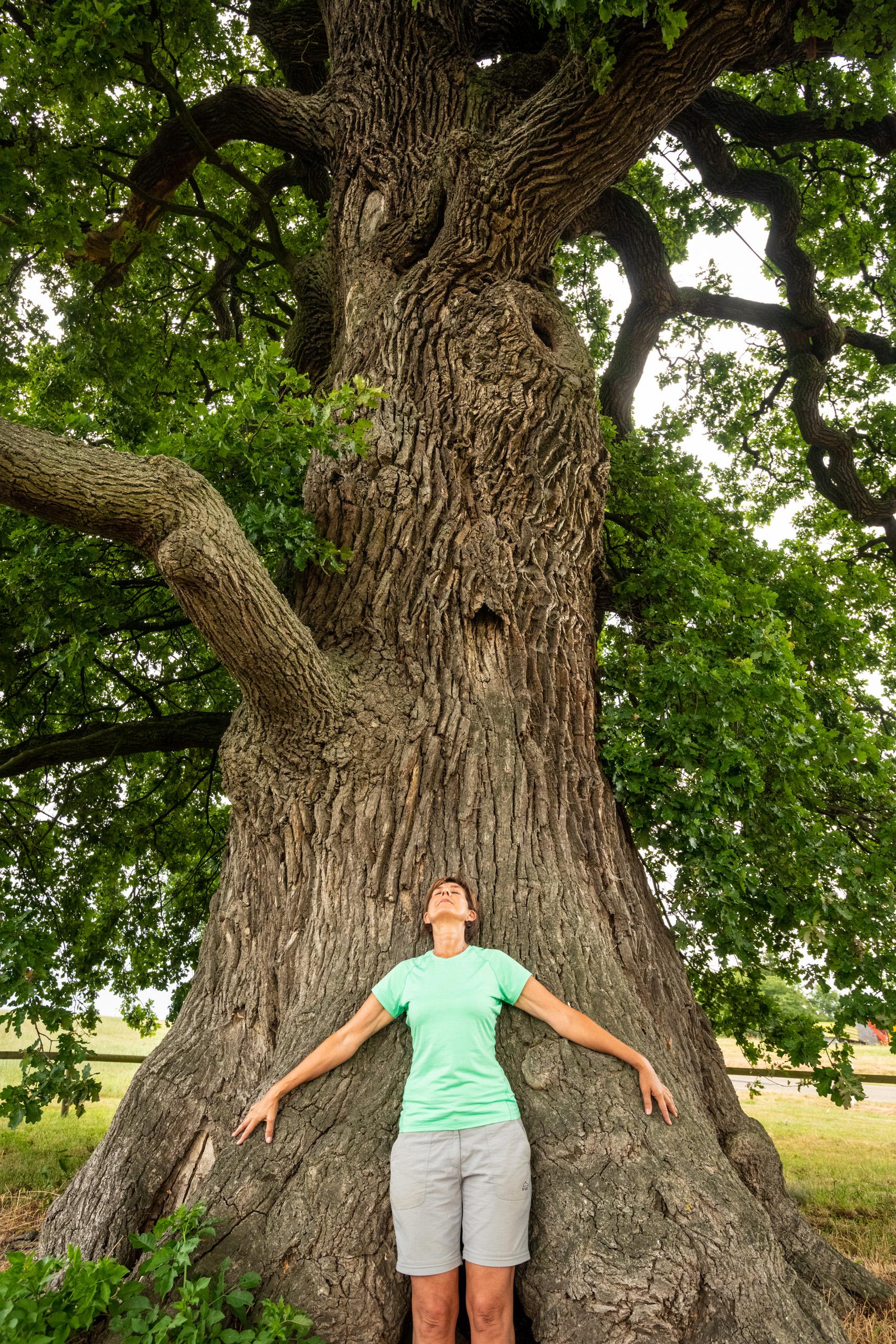 Eins mit dem Baum