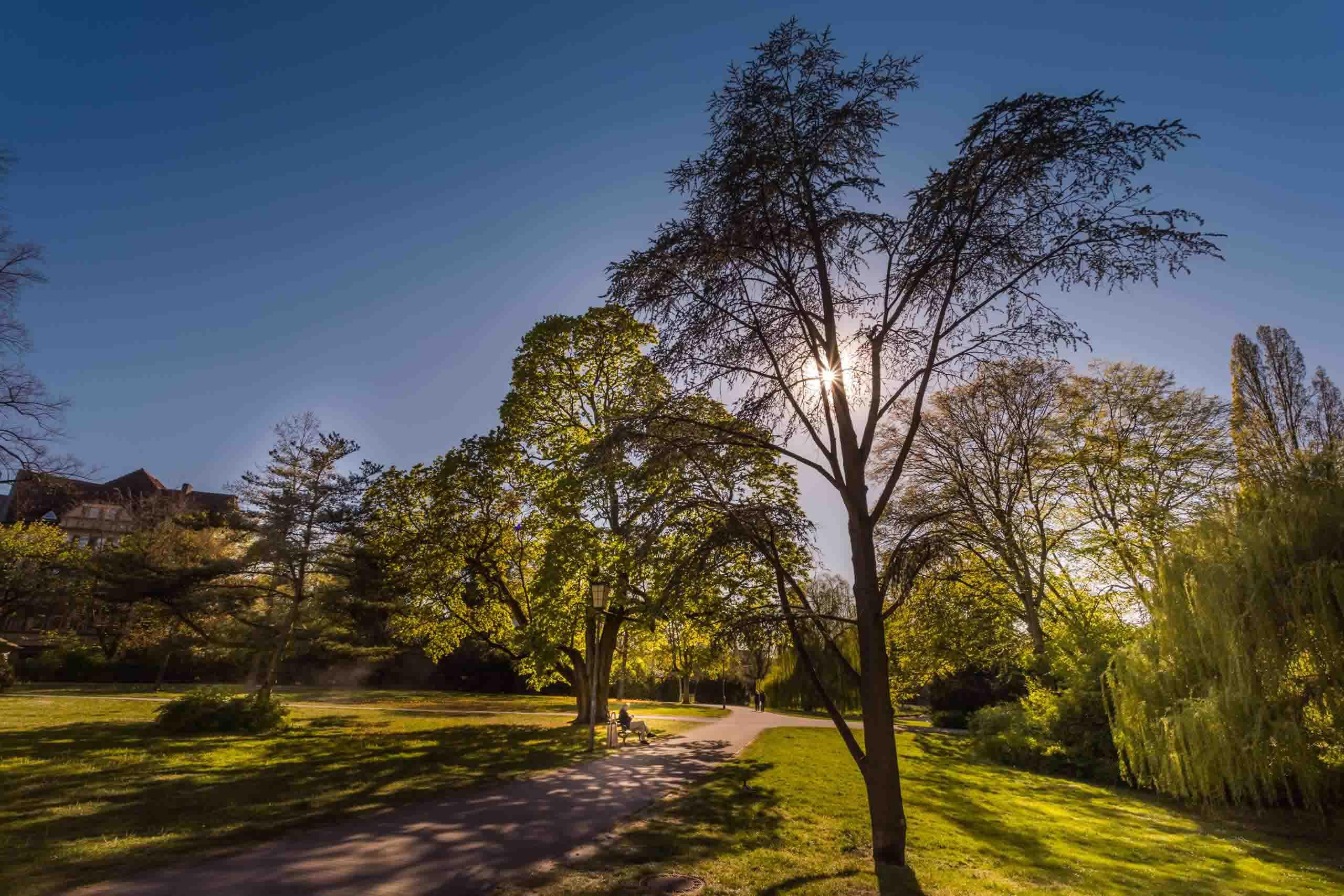 Celler Schlosspark