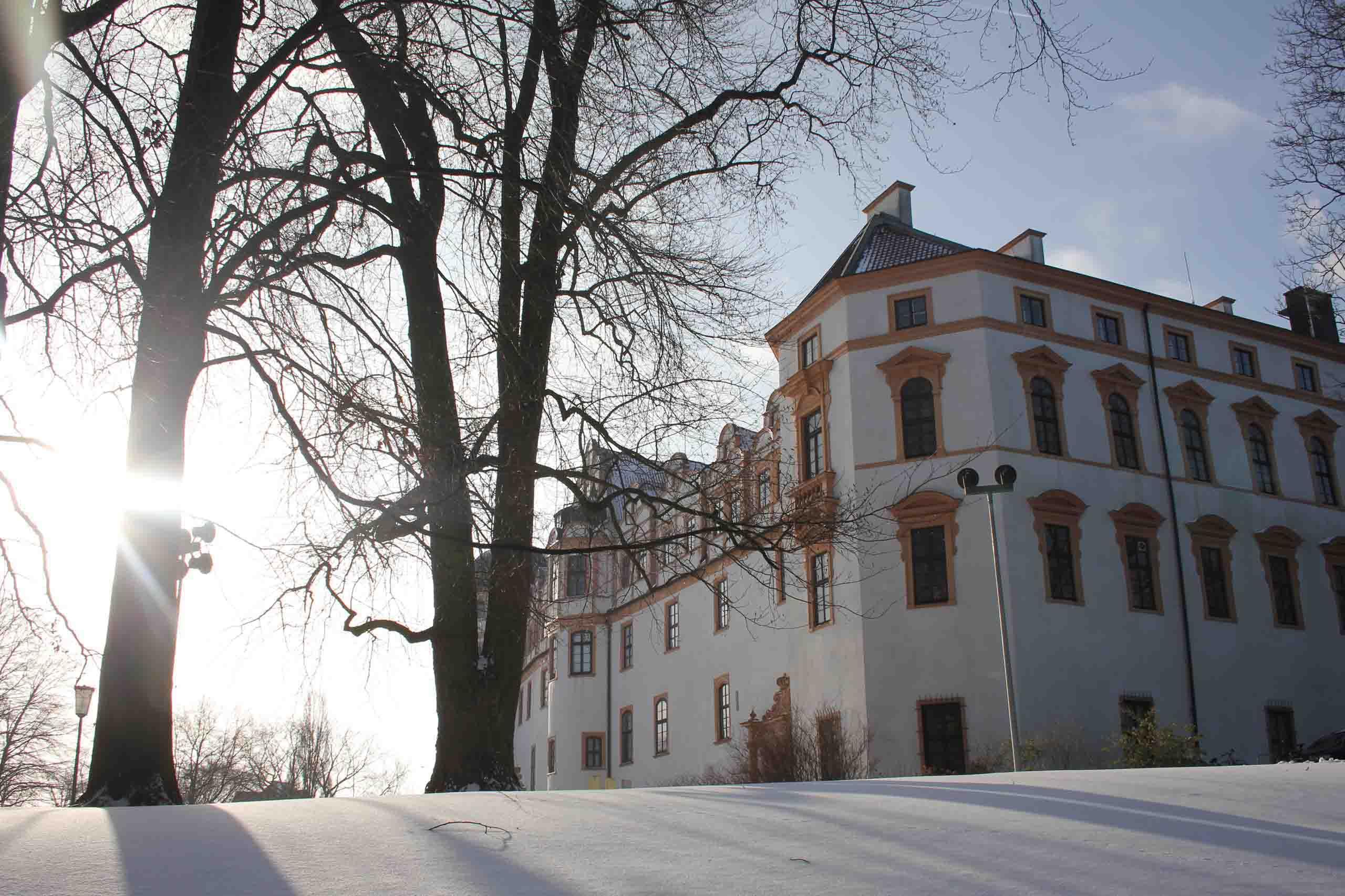 Celler Schloss im Winter