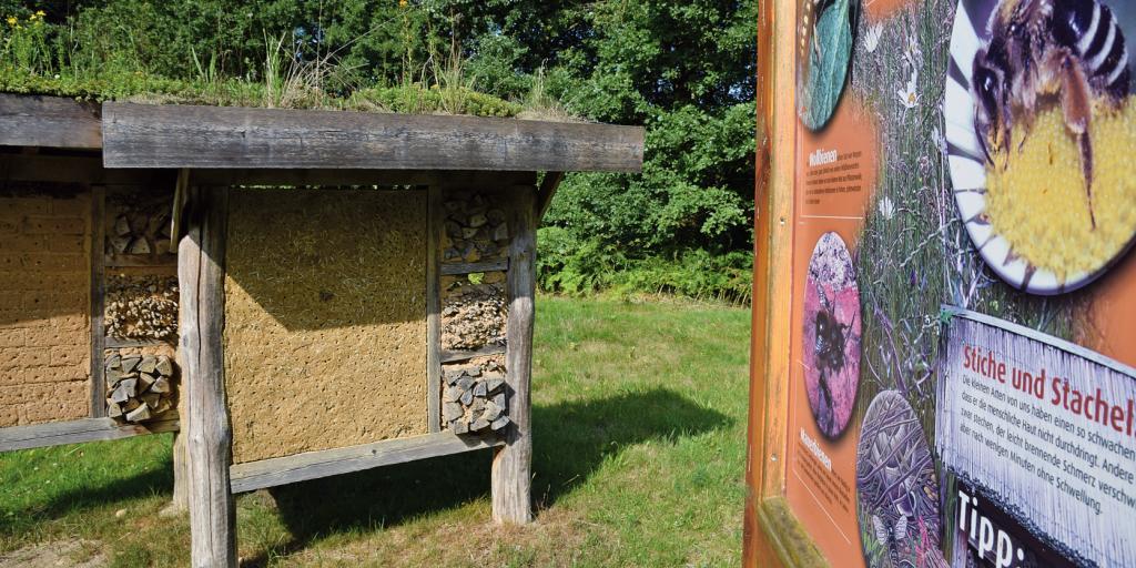 Insektenhotel mit informativer Schautafel