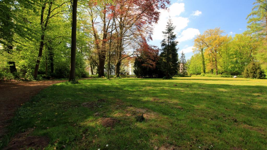 Blick in den Schlosspark Wehrden