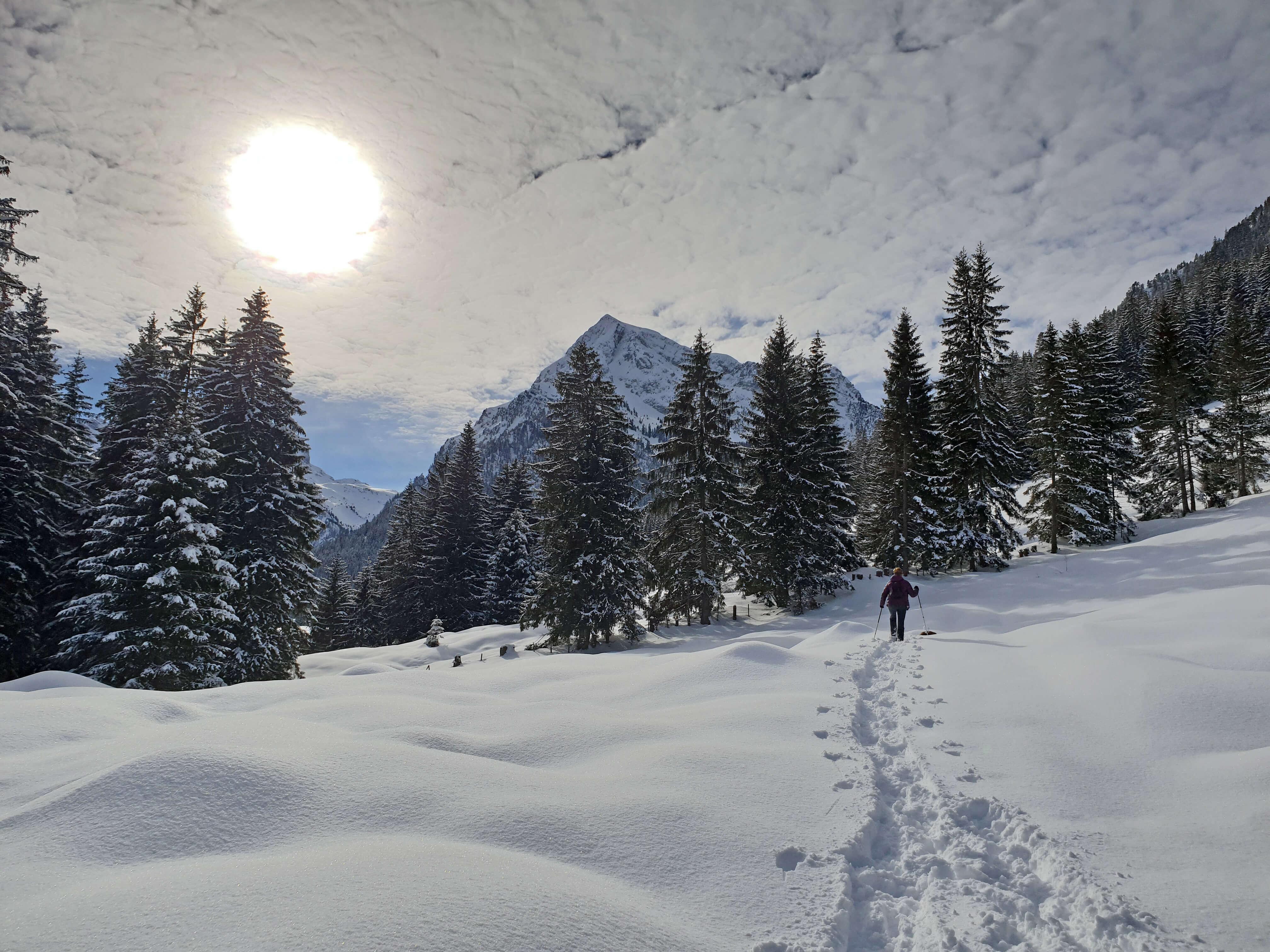 Schneeschuwandern Schwenden Winter Naturpark