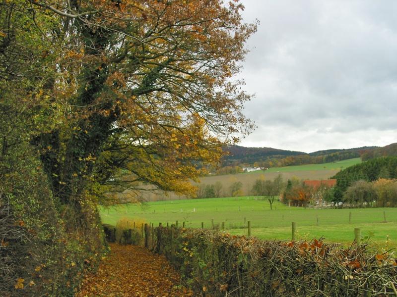 Blick auf den Teutoburger Wald am Iutspann Hiddentrup