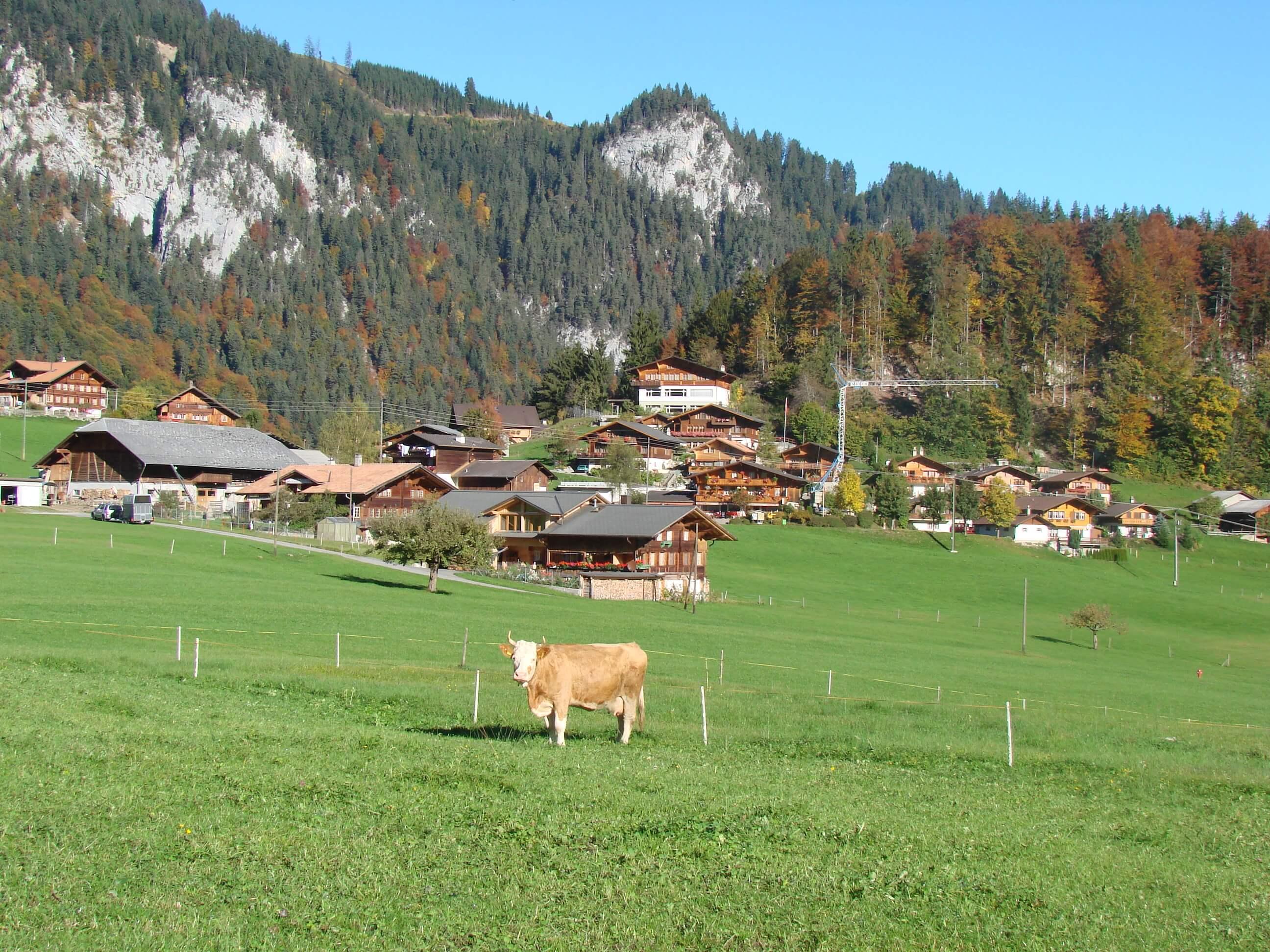 Dorf Entschwil im Herbst