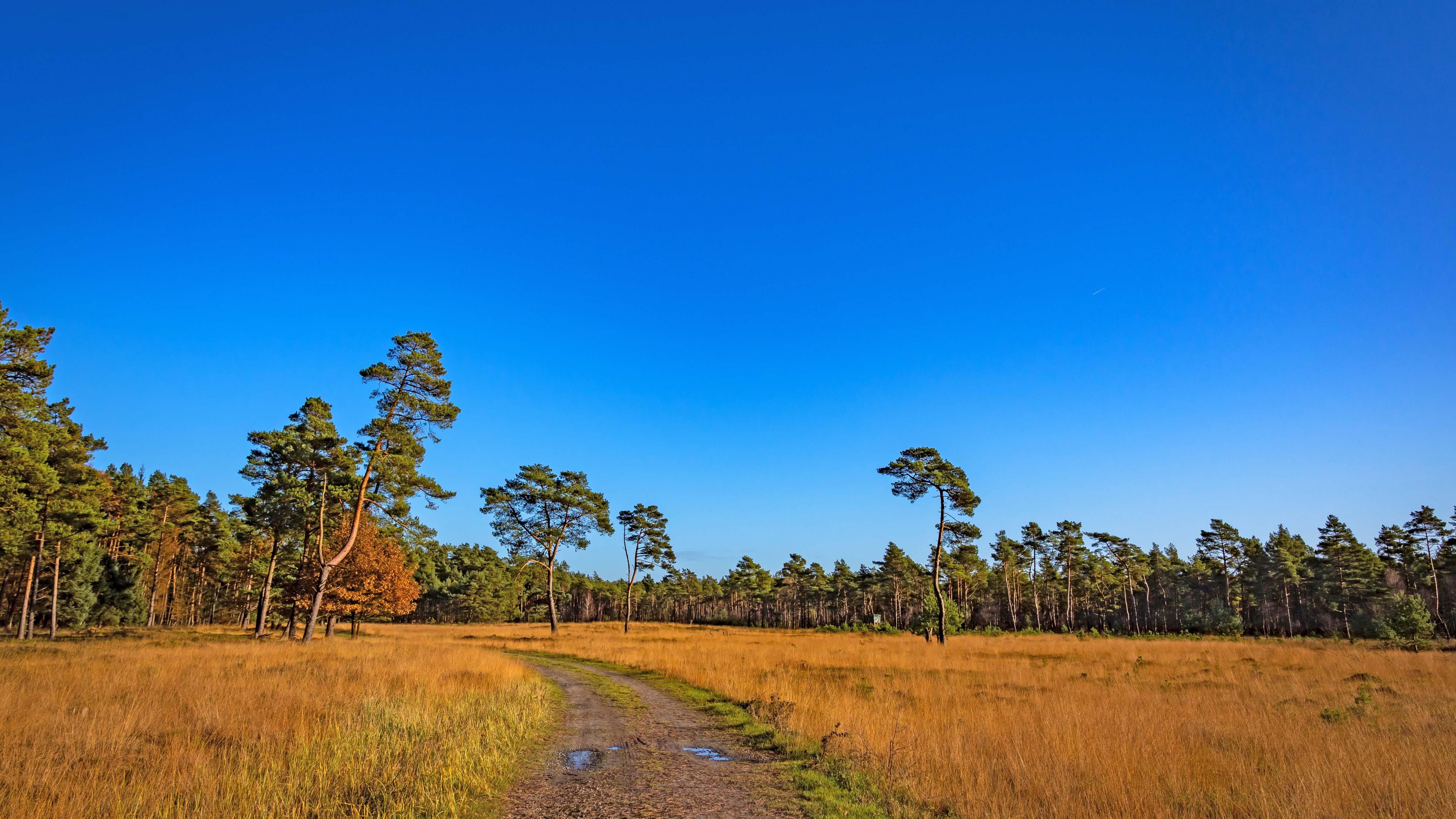 Prägend ist diese weite Wiesenlandschaft kurz vor dem Kleinen Bullensee