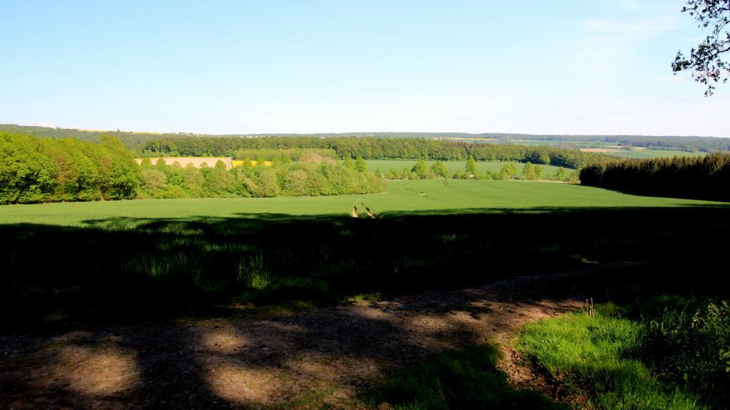 Blick vom Wildberg zur Hegge
