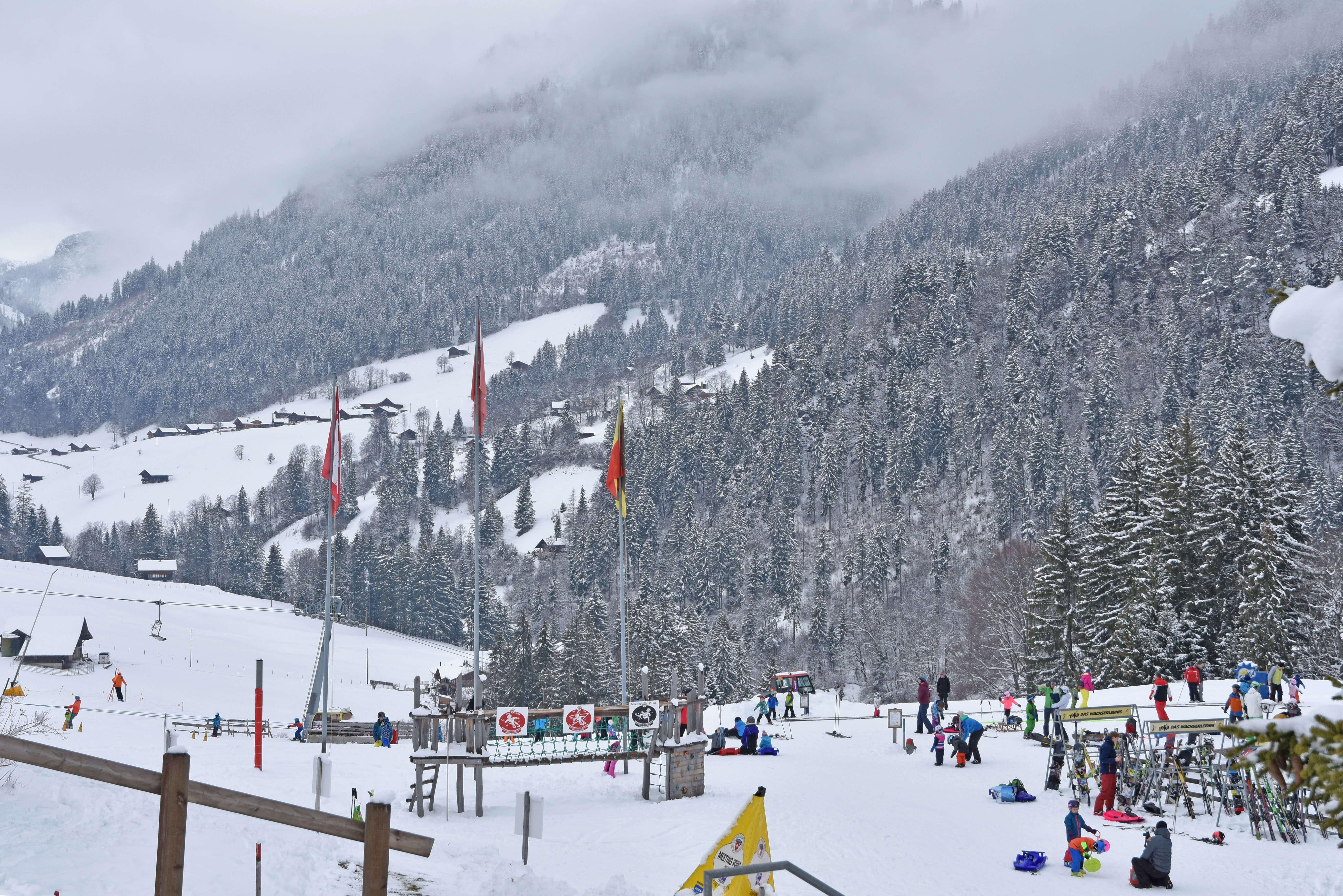 Winter Skischule Skipiste