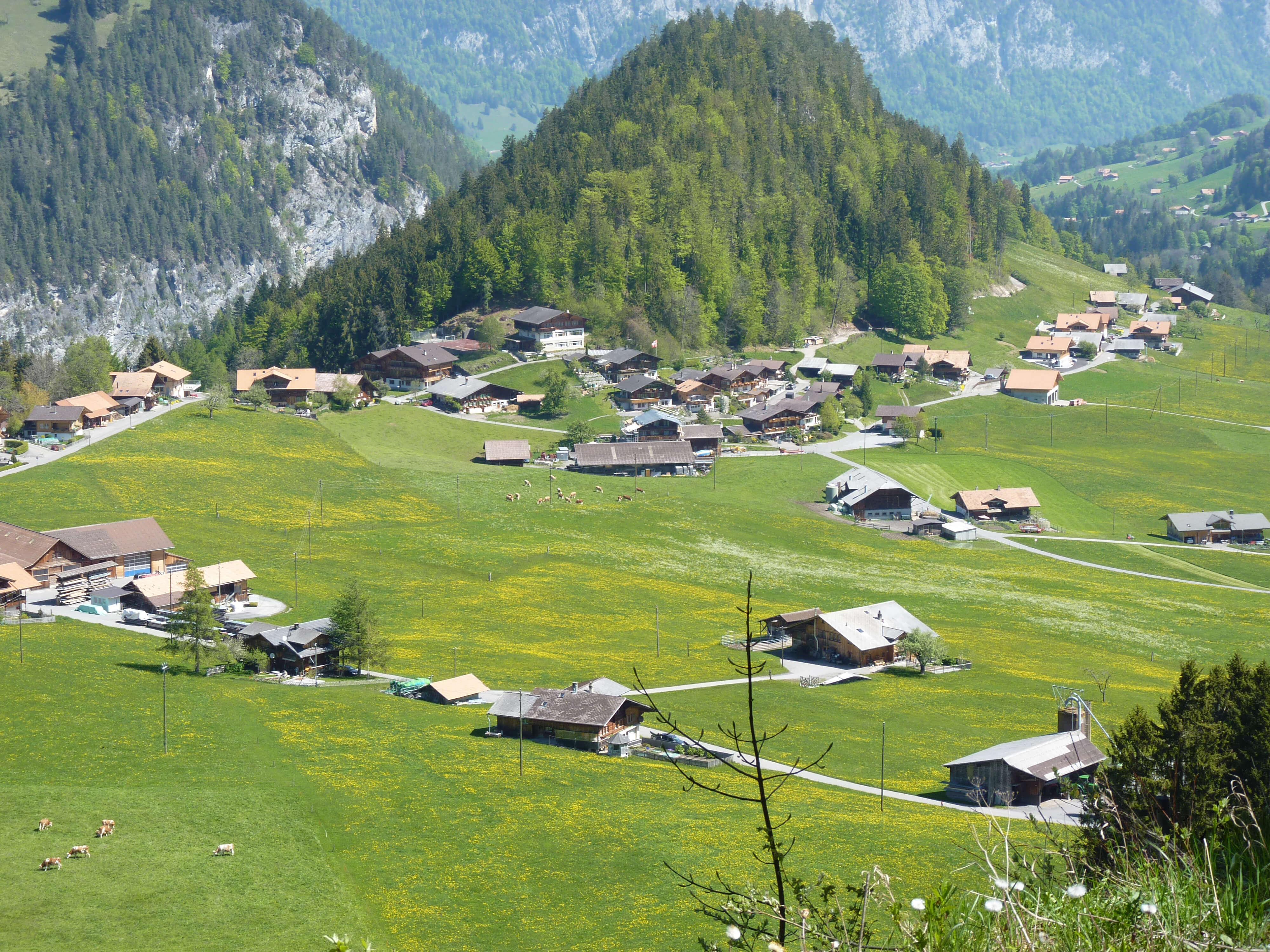 Dorf Entschwil Sommer Schulhaus