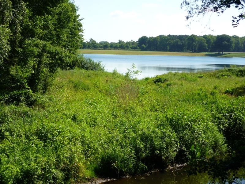 Naturschutzgebiet Emssee