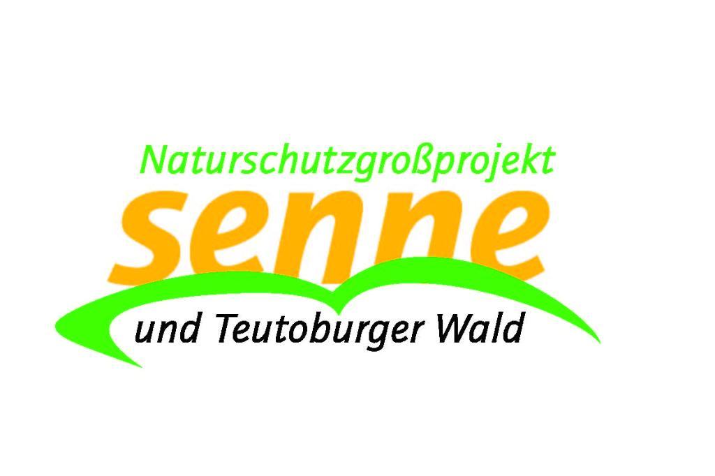 Logo NGP