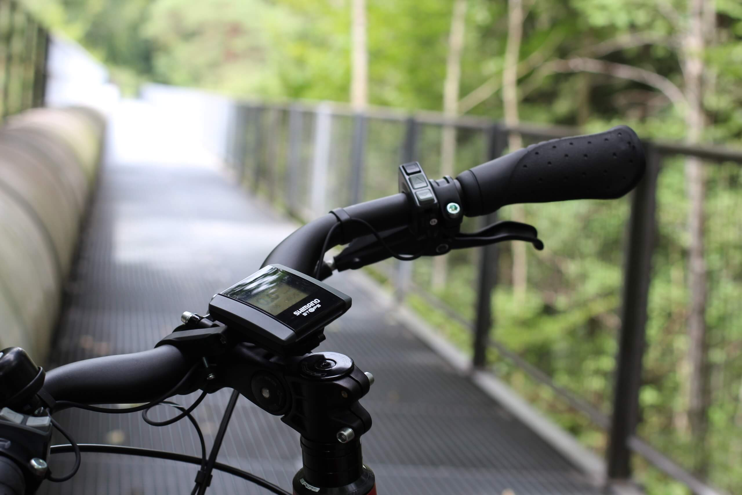 spiez-e-bike-vermietung-bruecke-sommer-tour