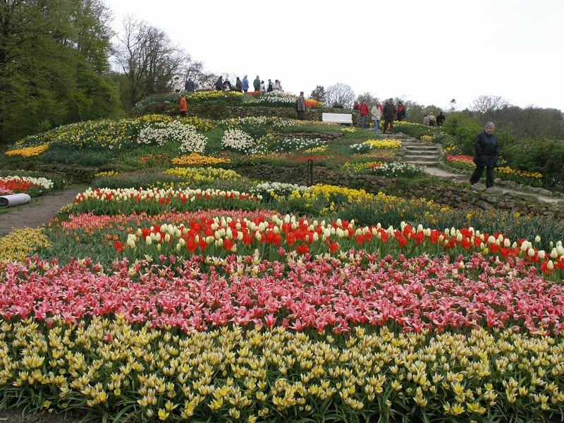 Blüende Pracht NaturaGart Ibbenbüren