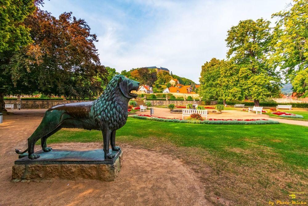 Löwe im Terrassengarten Blankenburg