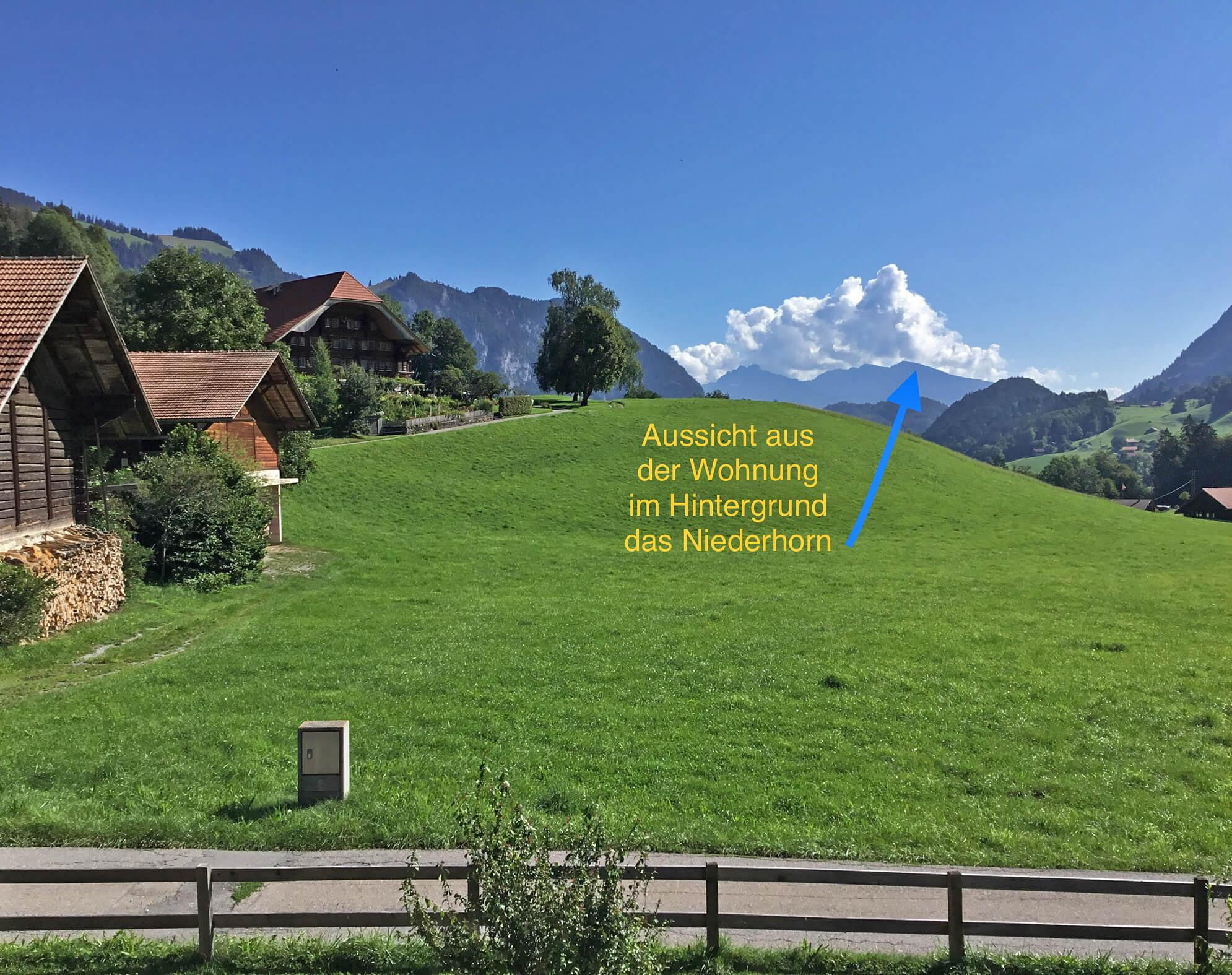 Aussicht Niederhorn