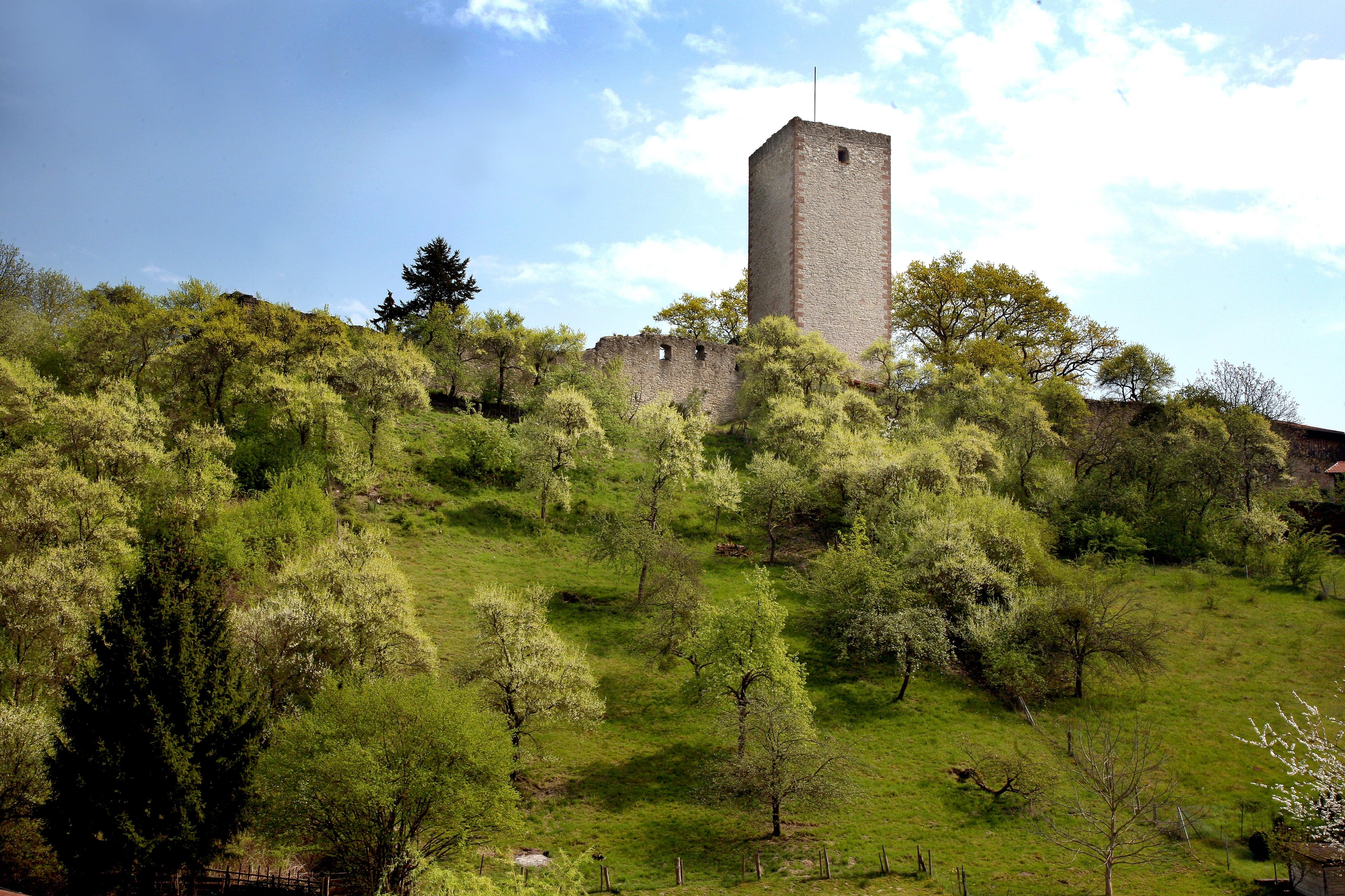 Greener Burg_Außenansicht