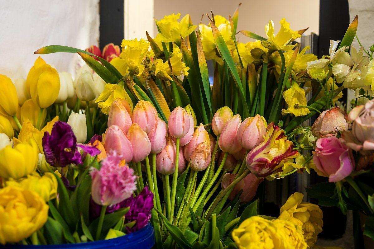 Blumenbinderei Meyer