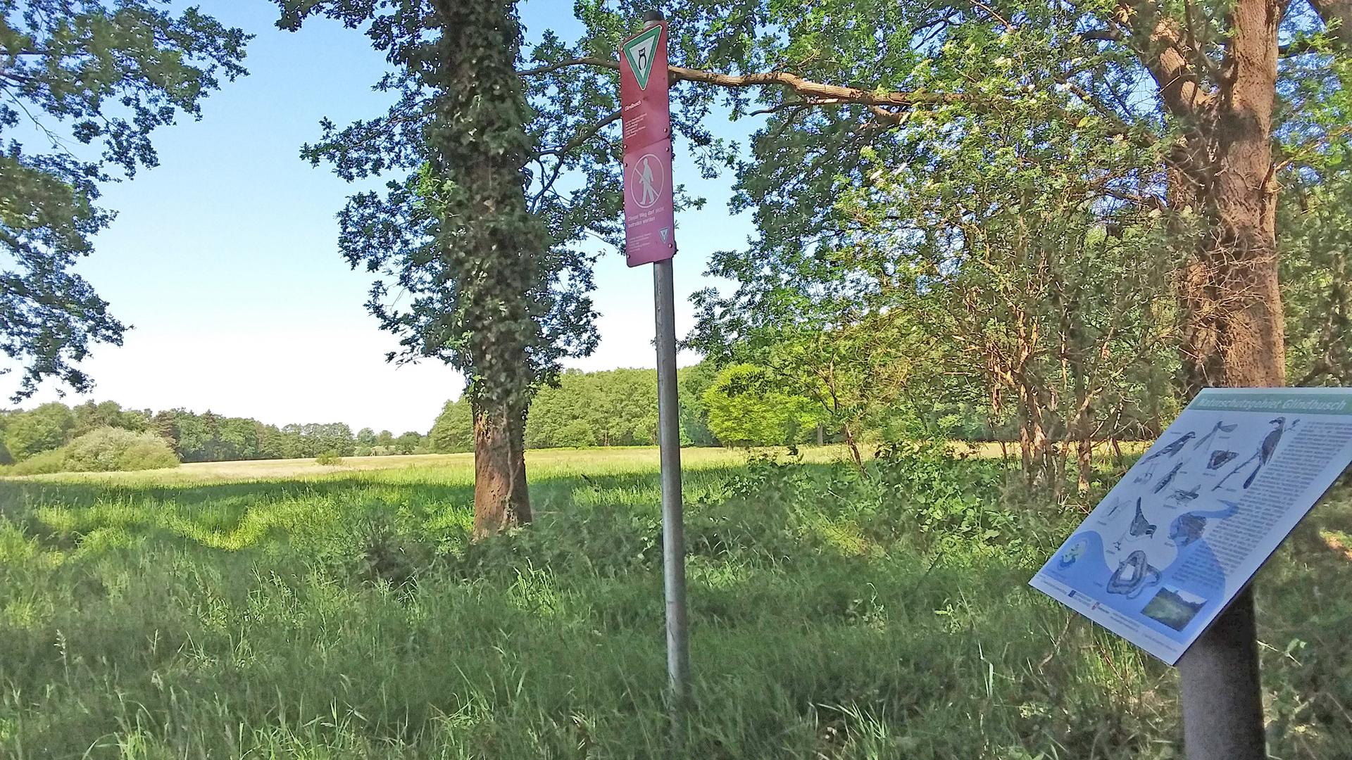 Der Glindbusch steht unter Naturschutz und darf nicht betreten werden