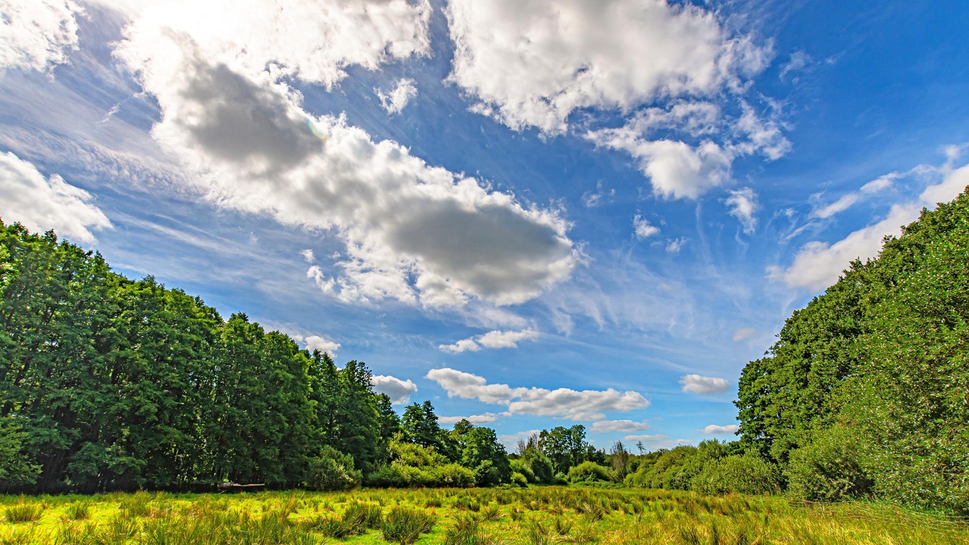 Natur pur rund um Mulmshorn - hier kommt man richtig zur Ruhe