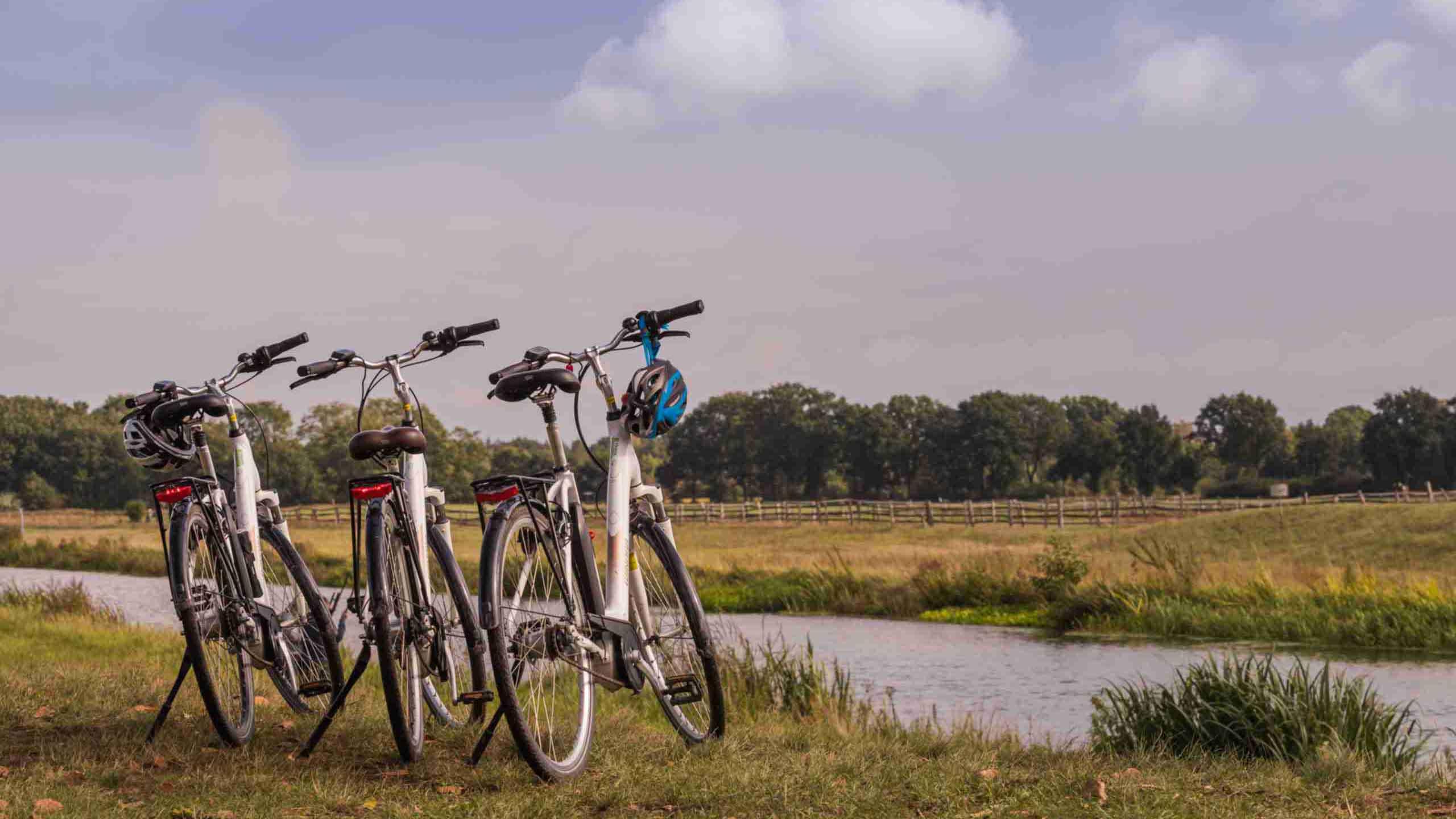 Radtour entlang der Aller