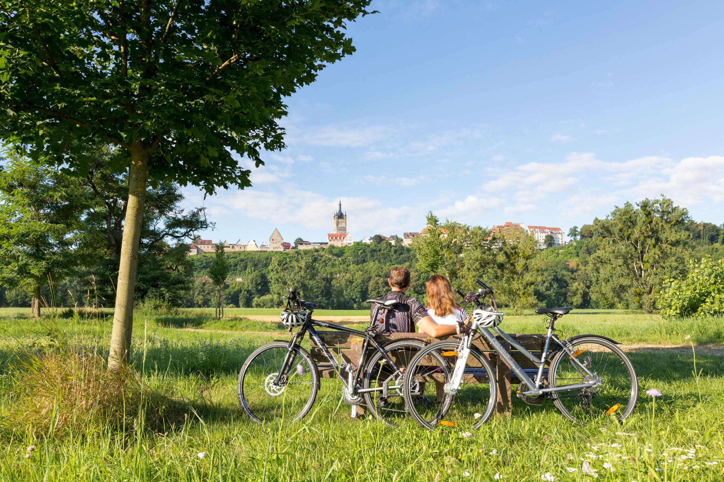 Bad_Wimpfen-Radfahren-Pause-Stadtsilhouette-03pg16.jpg