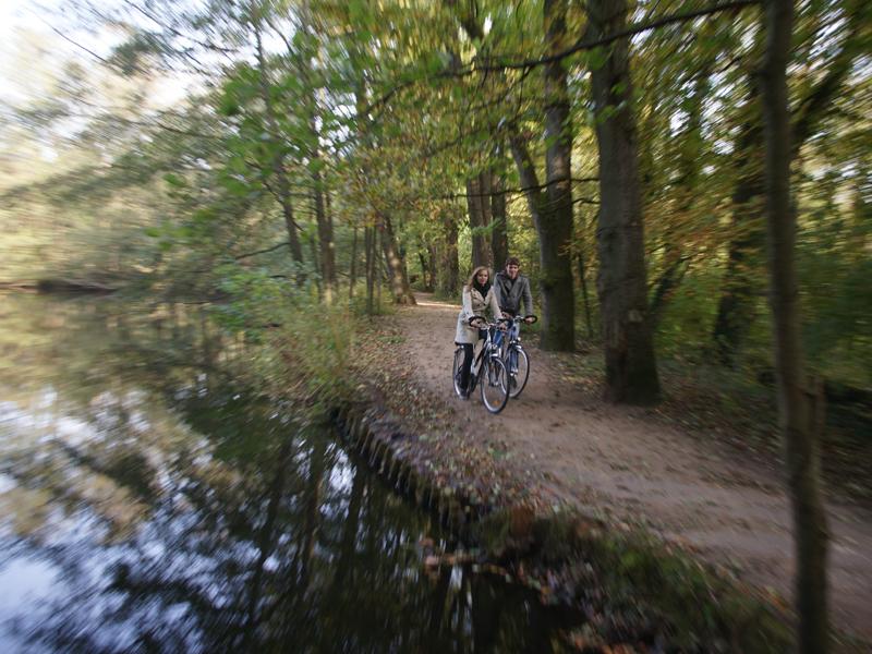 Sportlich Radfahren