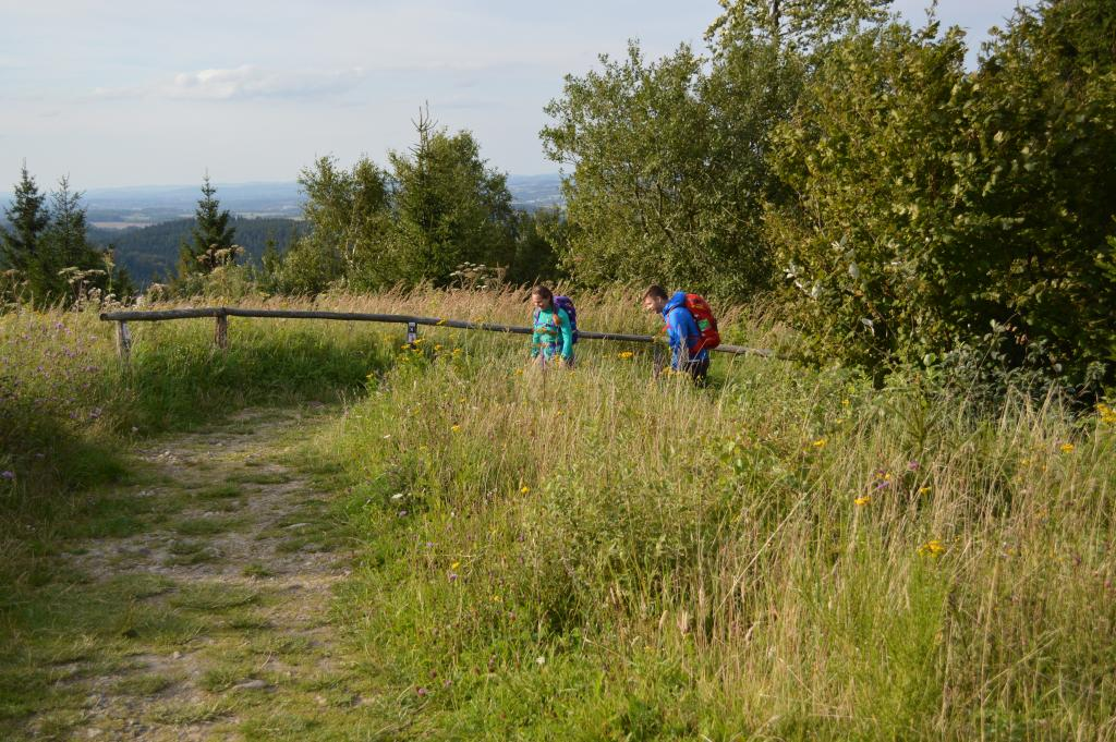 Naturbelassener Pfad an der Preussischen Velmerstot