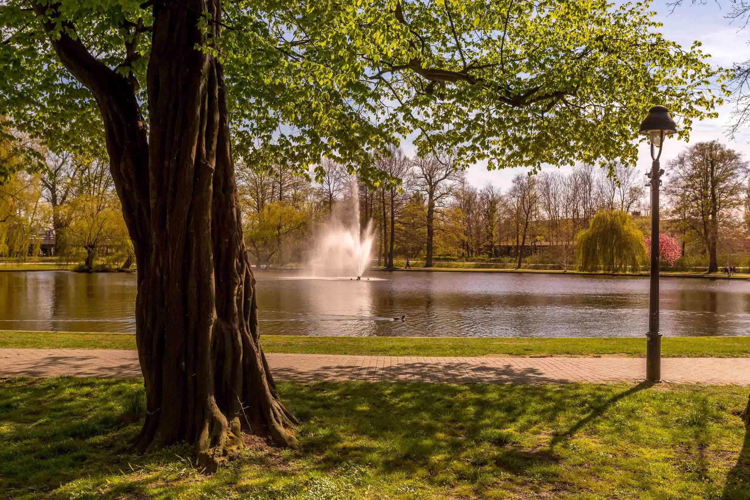 celle-franz-sicher-garten-springbrunnen