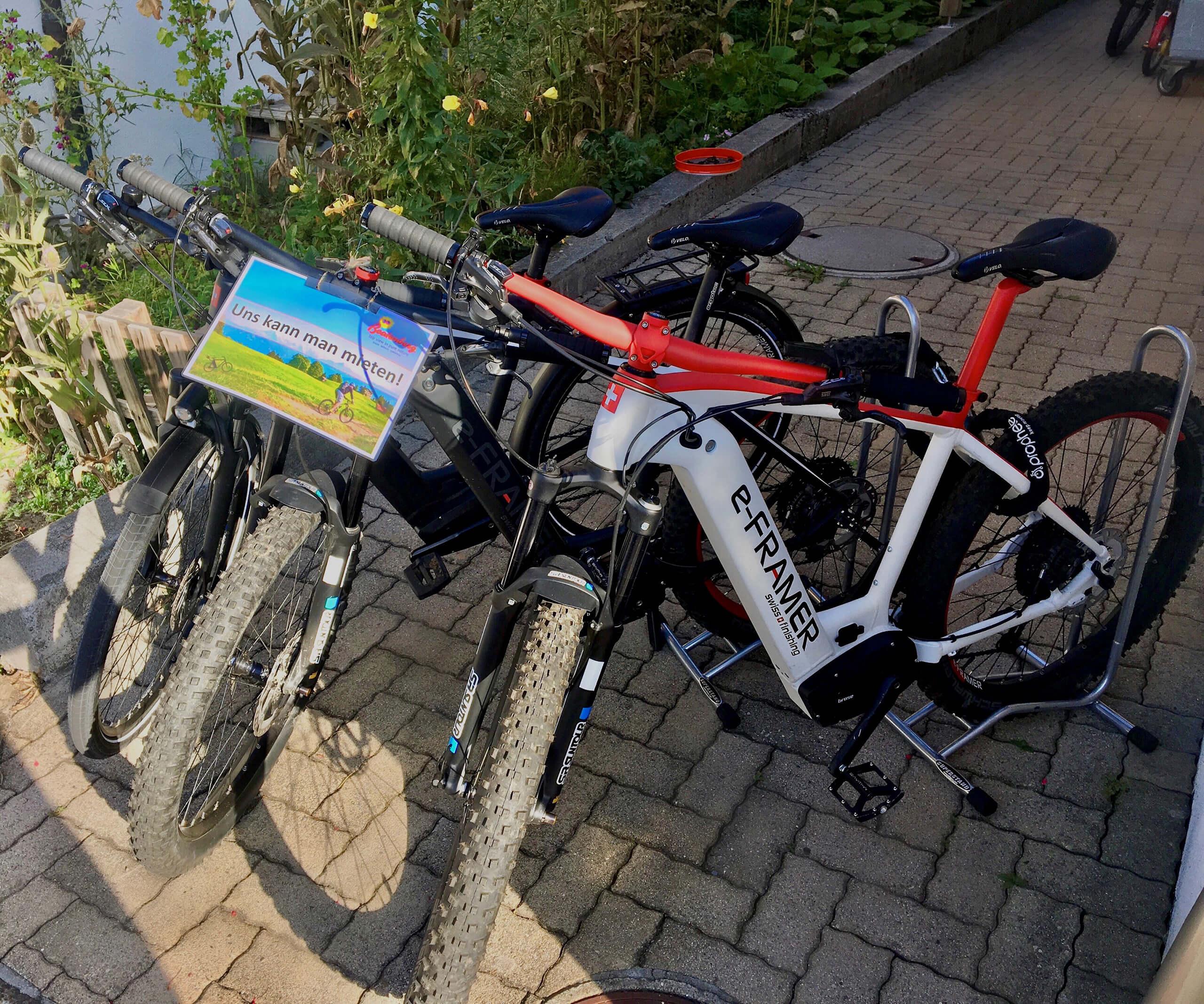 beatenberg-ebike-vermietung-bikes-front.jpg