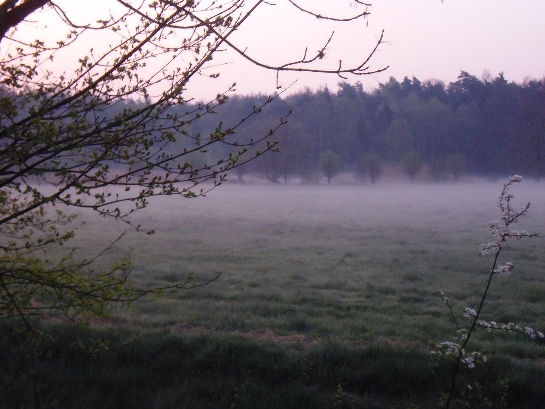 Stemwede früh am Morgen