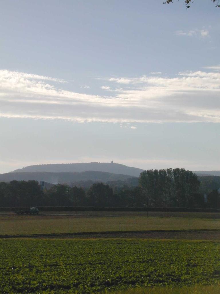 Blick zum Hermannsdenkmal