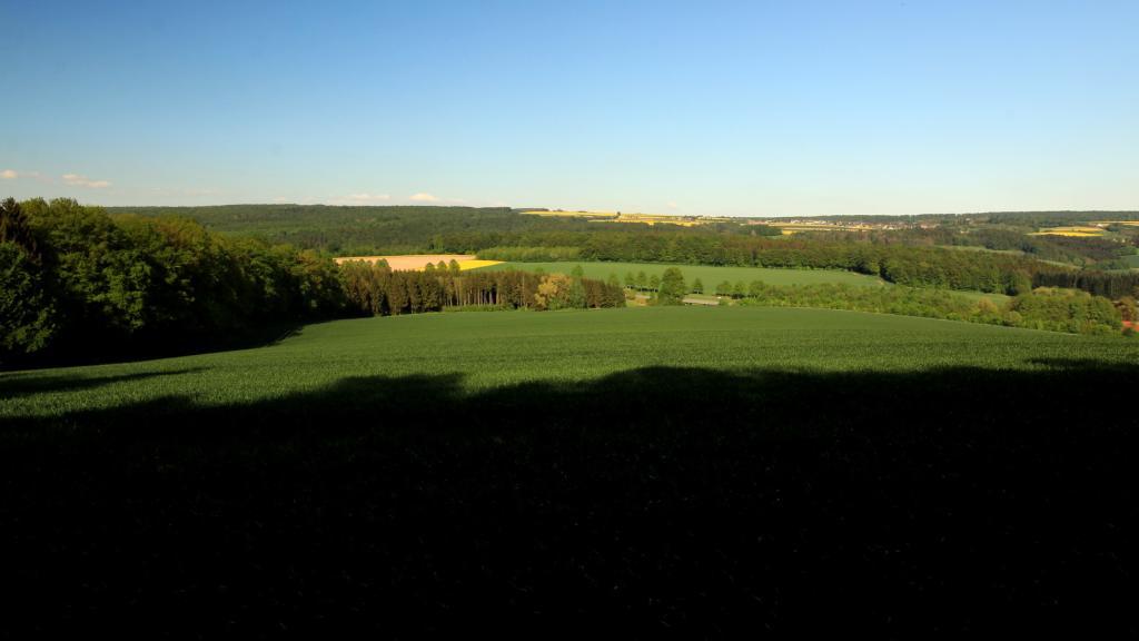 Blick vom Bierenberg zum Solling