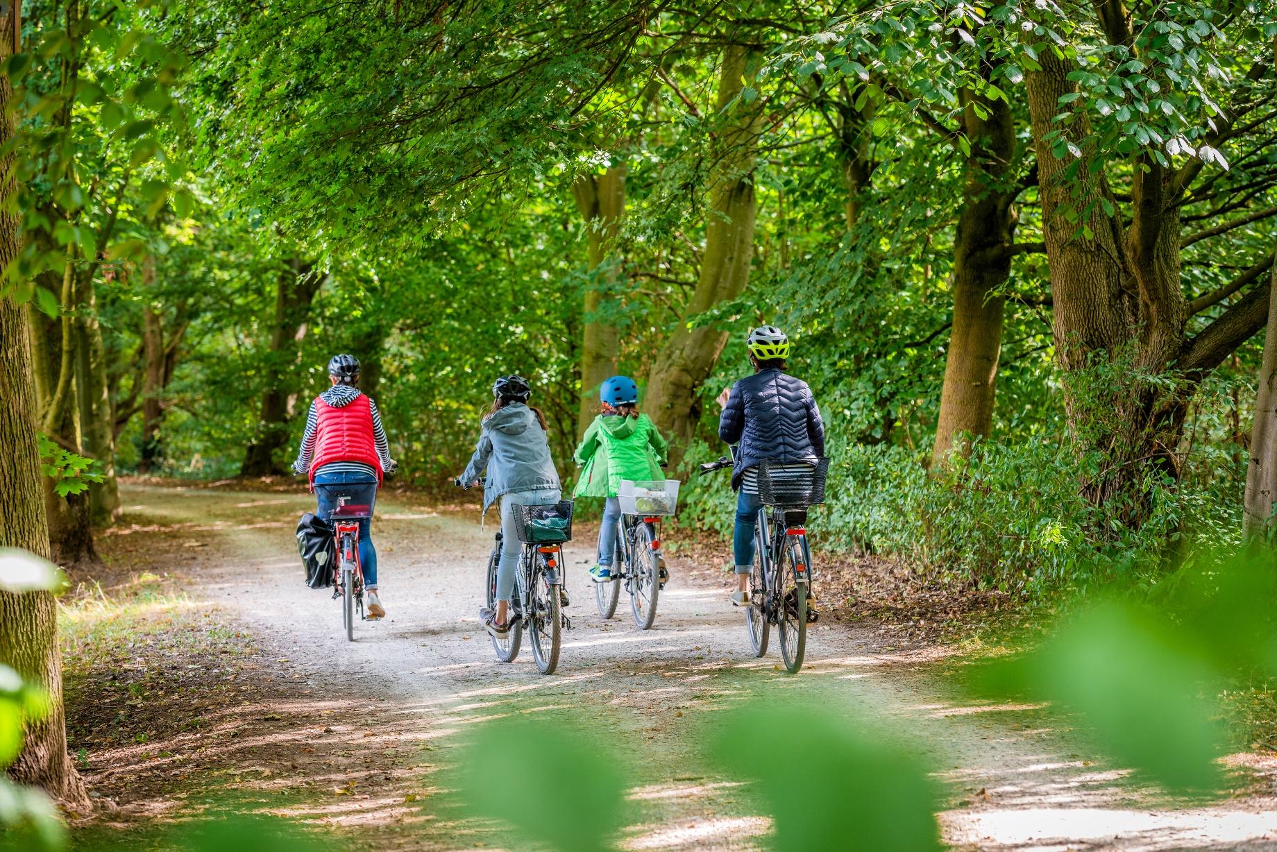 Radfahren durch den Patthorster Wald