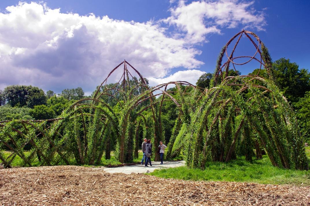 Weidenpalais in Rheder