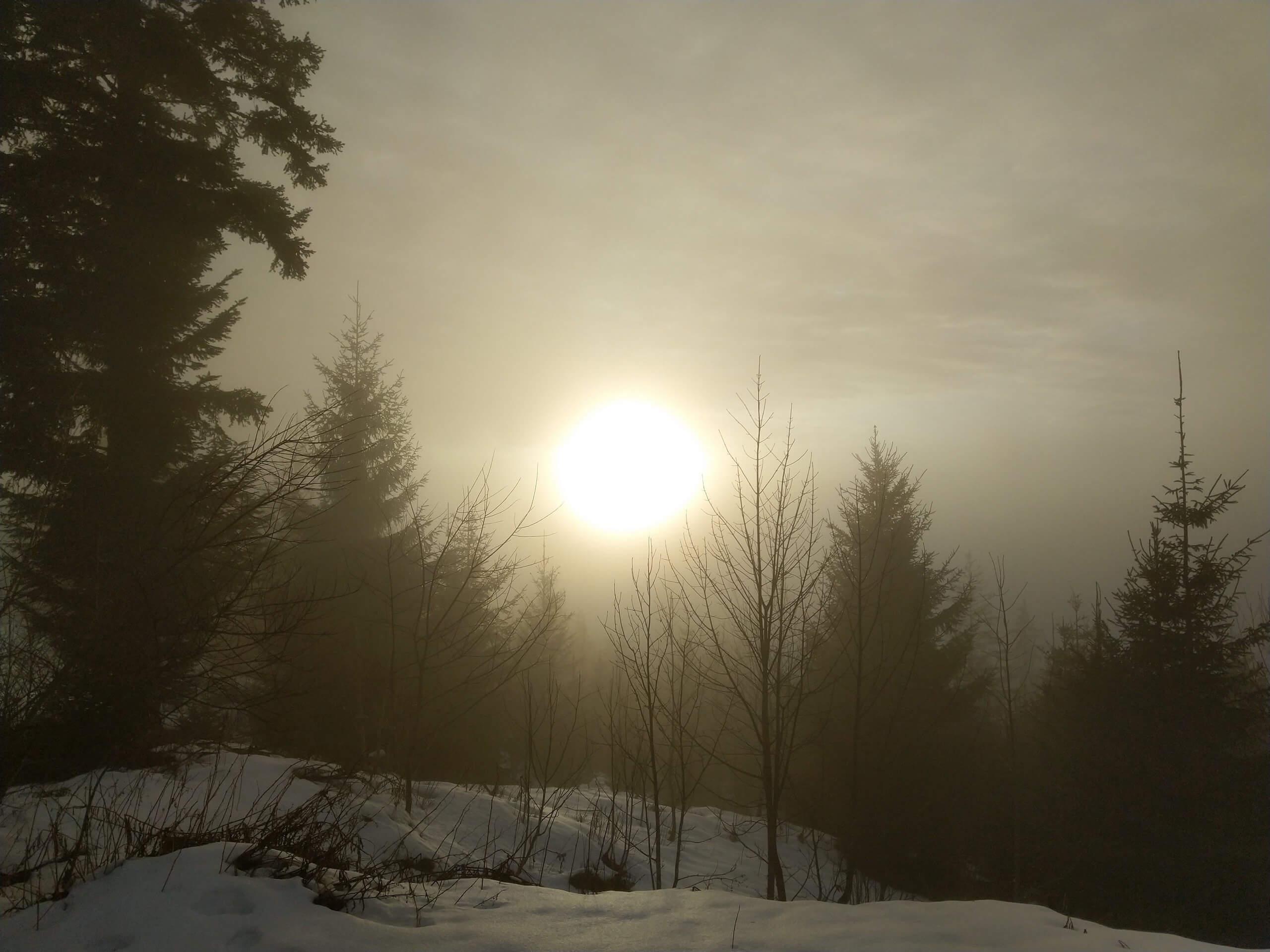 schneeschuh-tour-sigriswil-daniel-zenge-sonne.jpg