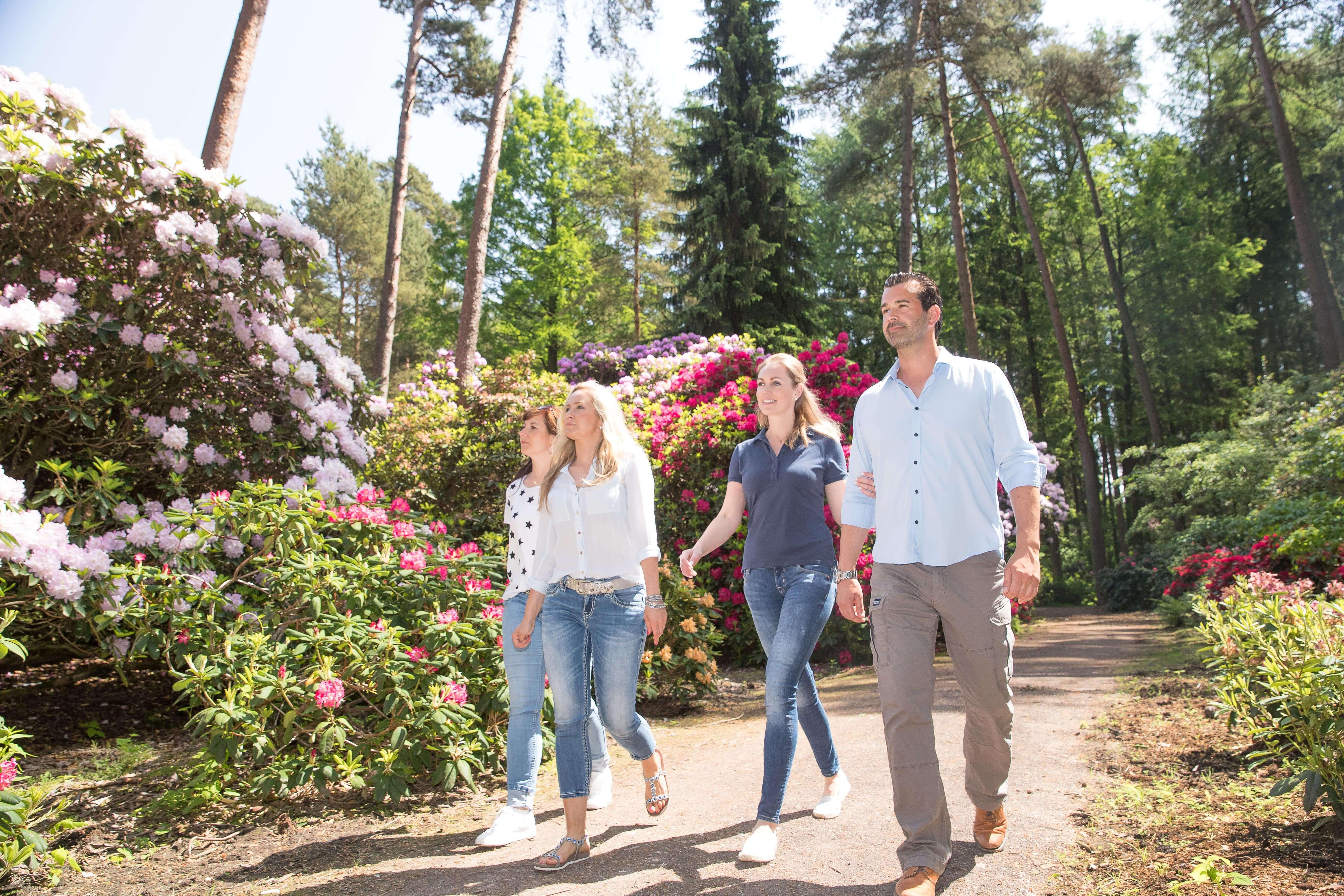 Impressionen im Rhododendronpark Bruns