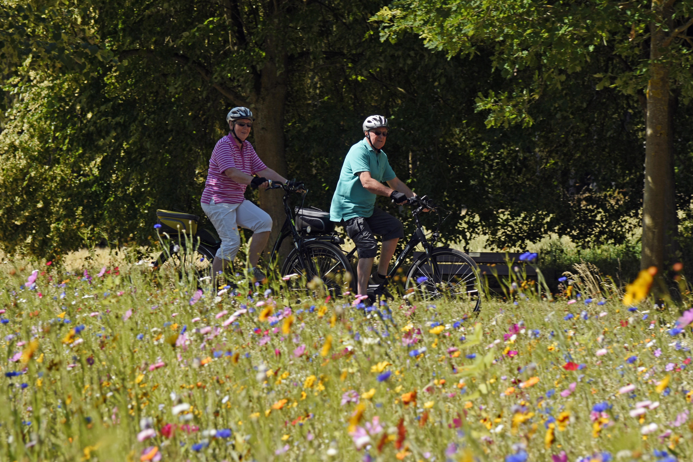 Radfahrer auf dem Weg nach Hardehausen