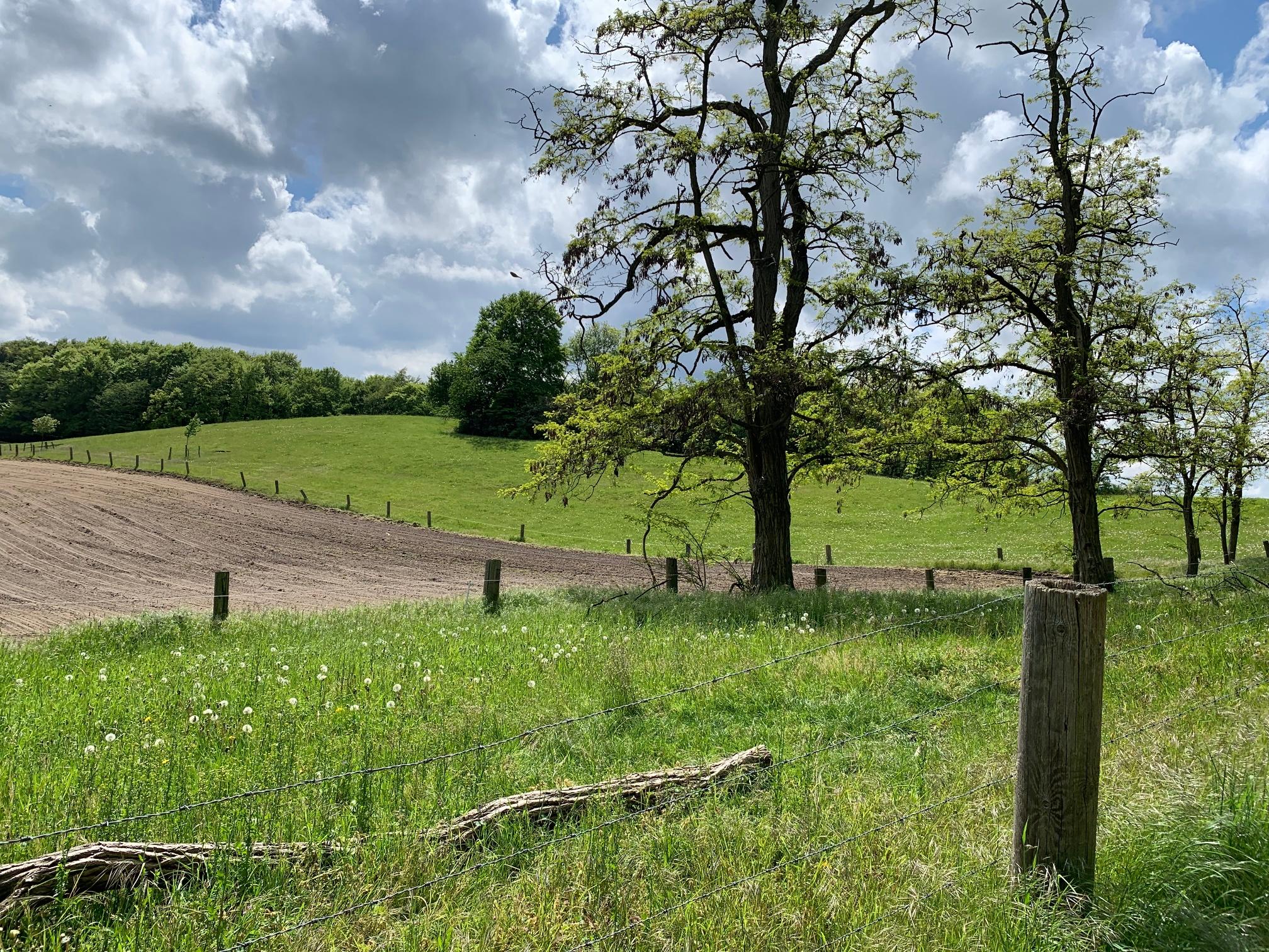 Naturschutzgebiet Jakobsberg