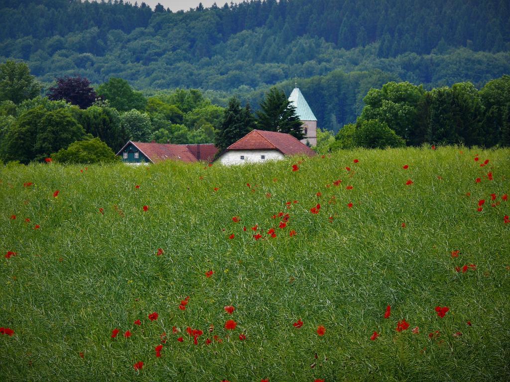 Idyllisch liegt Kirchdornberg am Fuße des Teutoburger Waldes (Foto: Jürgen Benne)