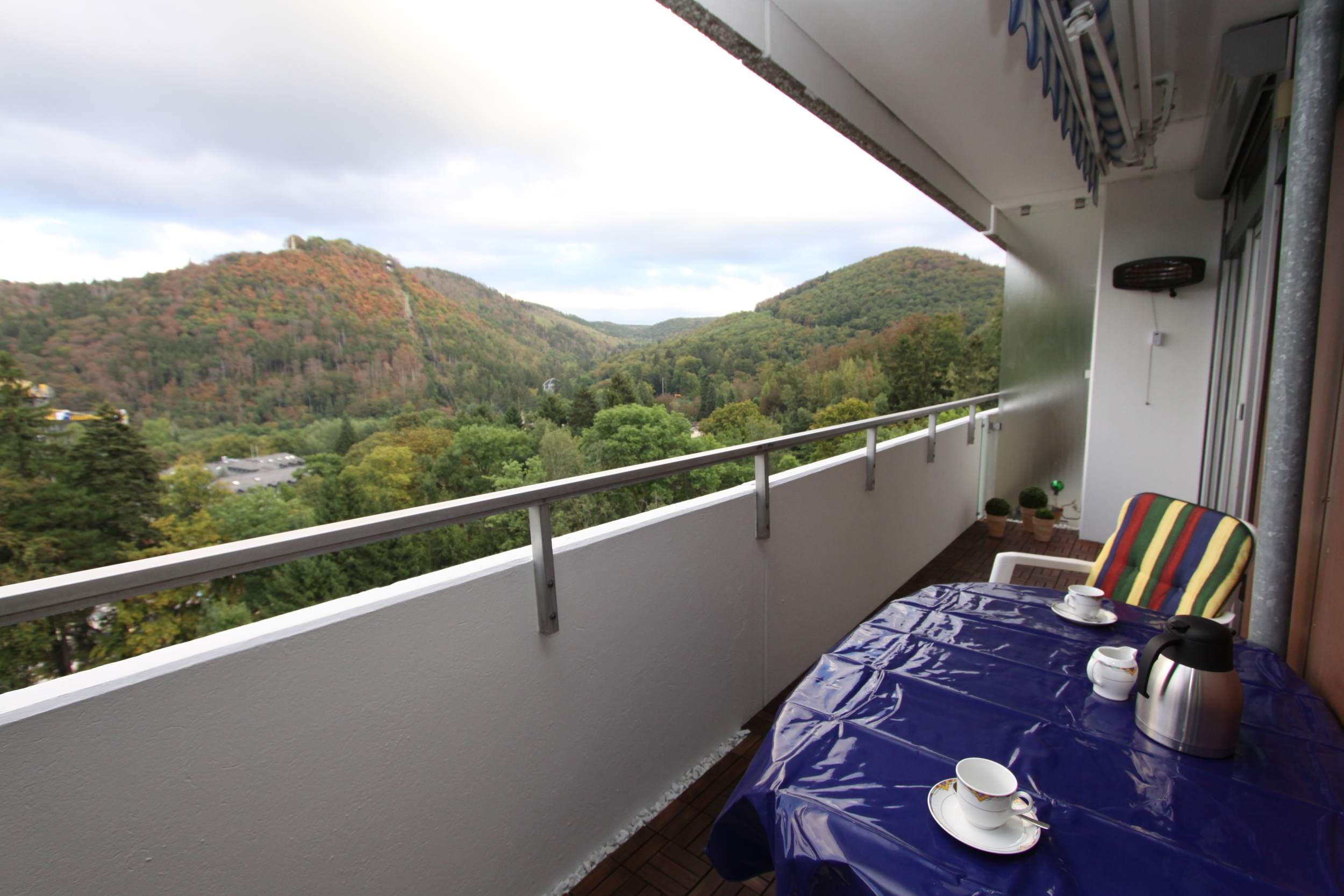 Ferienwohnung Riefenbach in Bad Harzburg - Balkon