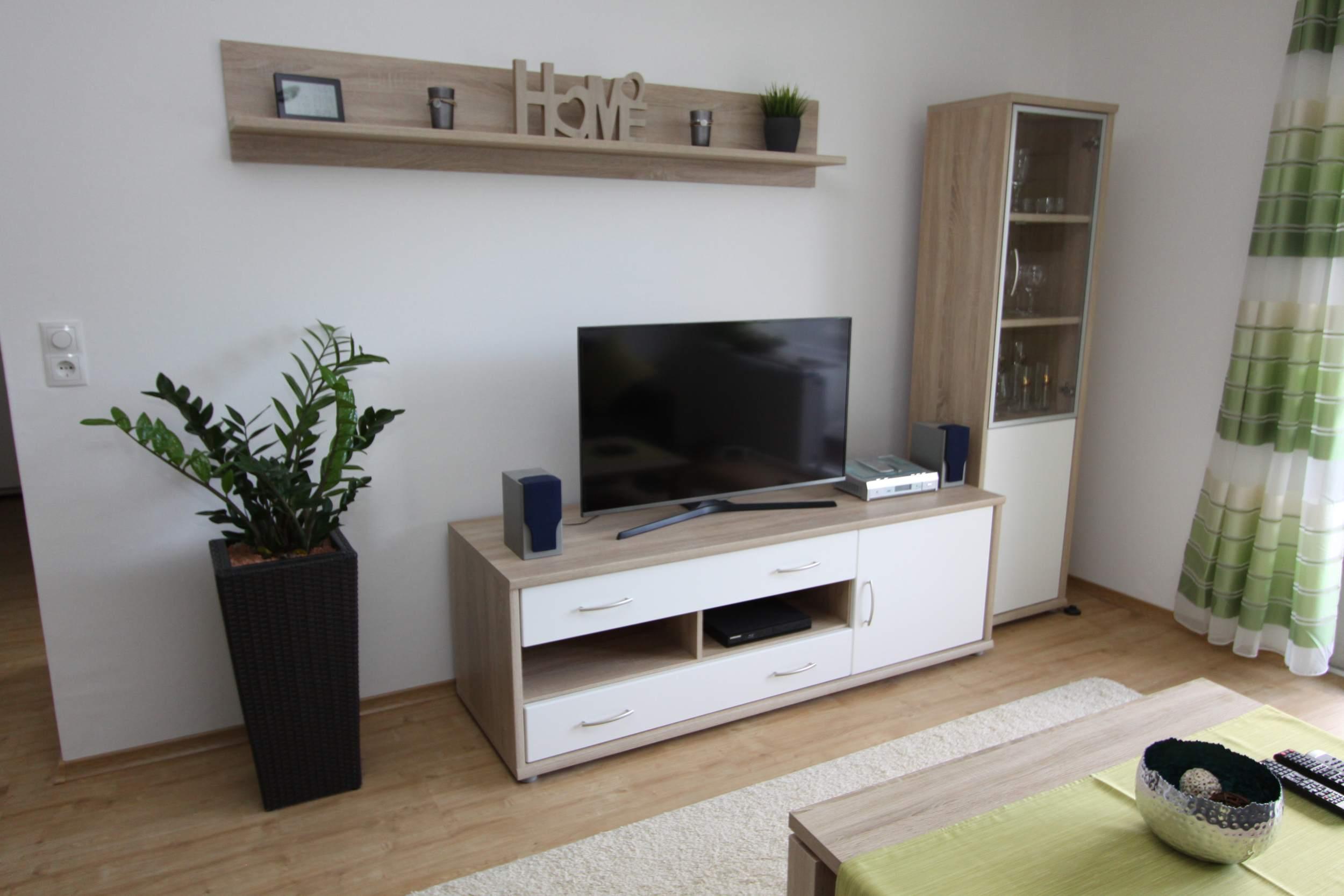 Ferienwohnung Riefenbach in Bad Harzburg - Wohnbereich mit Fernseher