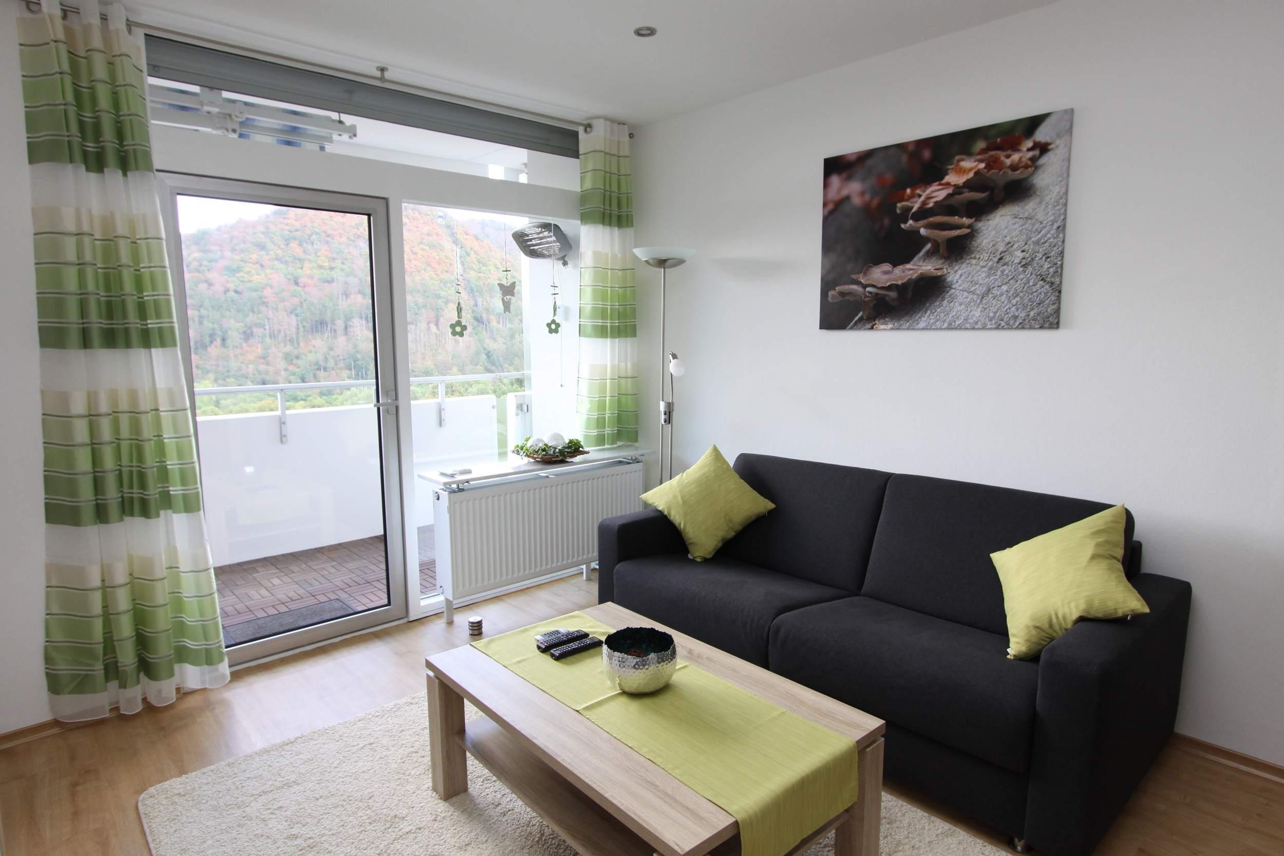 Ferienwohnung Riefenbach in Bad Harzburg - Wohnbereich mit Sofa