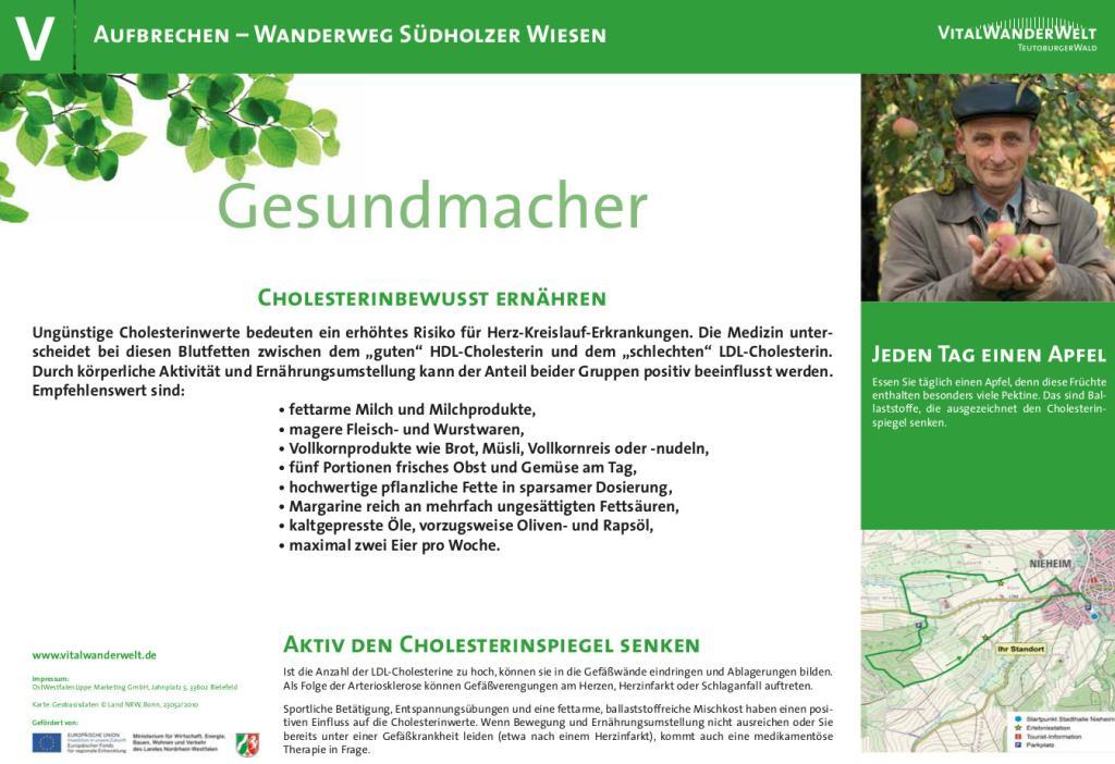VitalWanderWelt Wanderweg Südholzer Wiesen - Gesundmacher