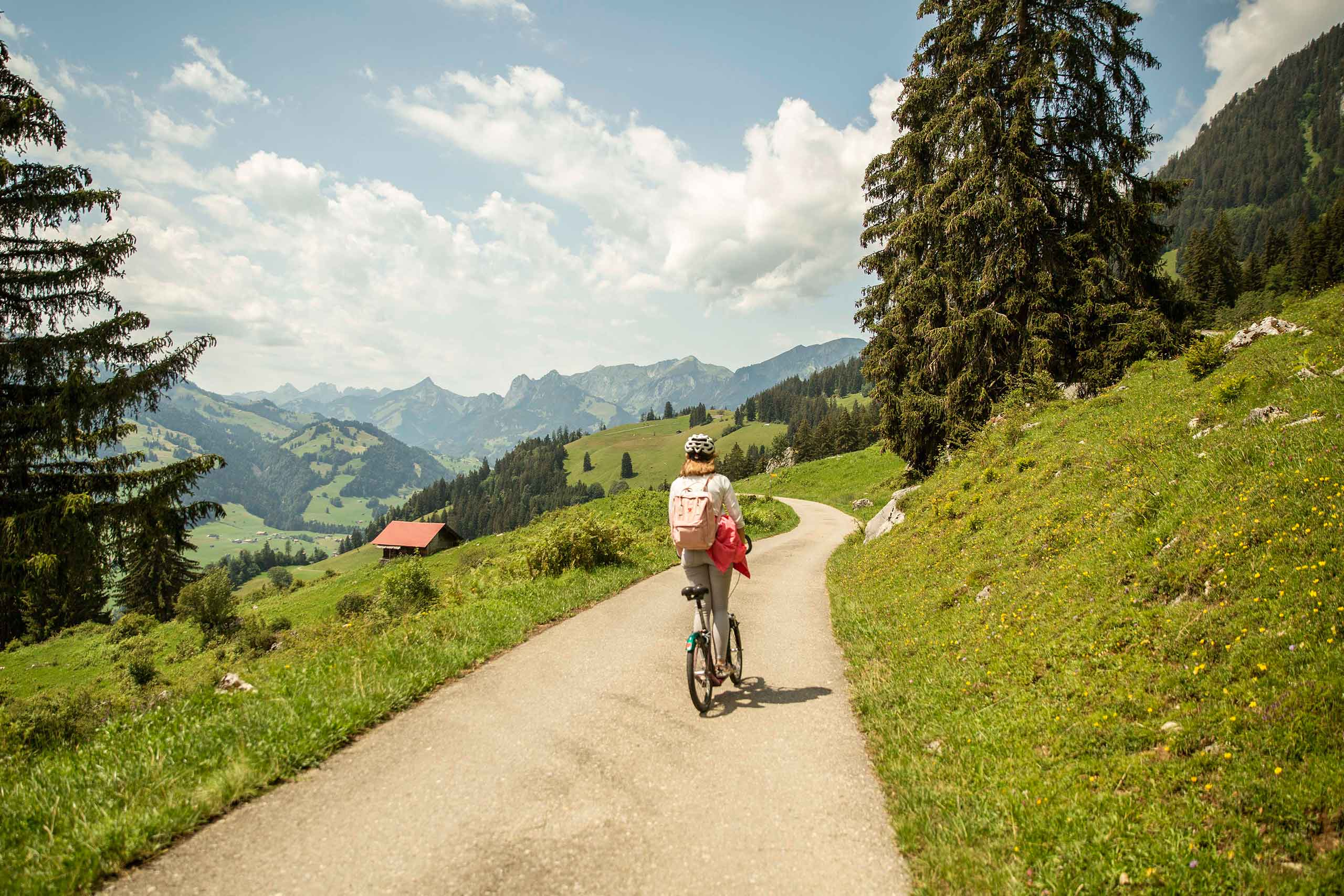 stockhorn-trotti-bike-talfahrt-aussicht-simmental-sommer-landschaft.jpg