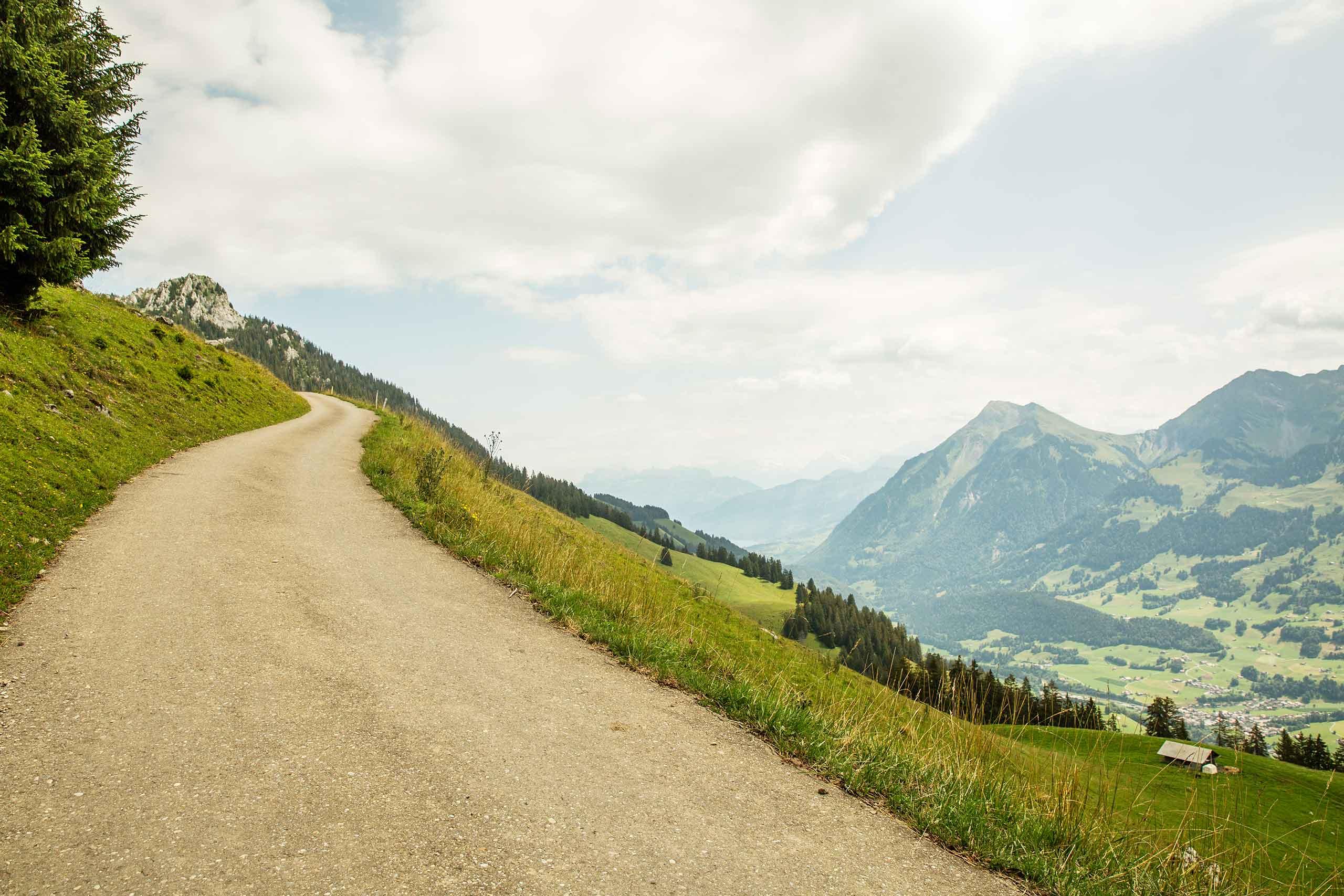 stockhorn-trotti-bike-sommer-strasse-wiese-landschaft-simmental.jpg