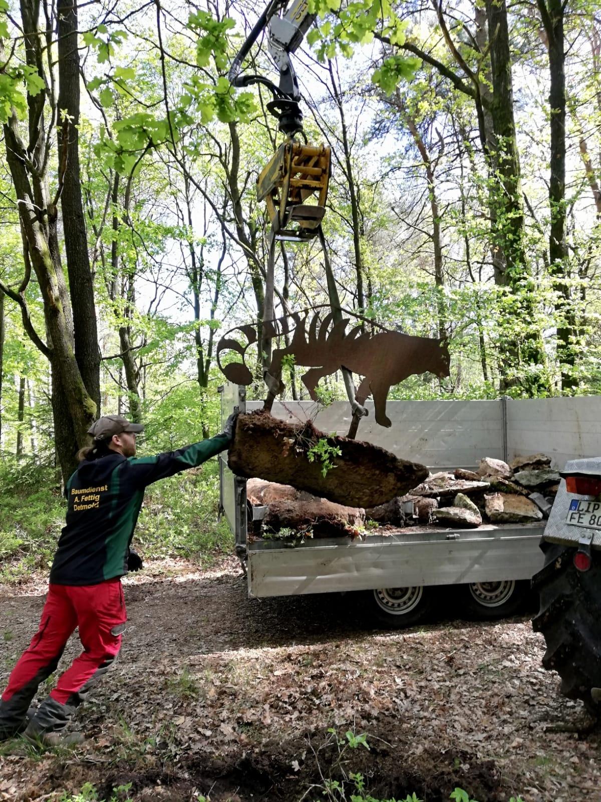 Wildkatze-Skulptur wird umgesetzt